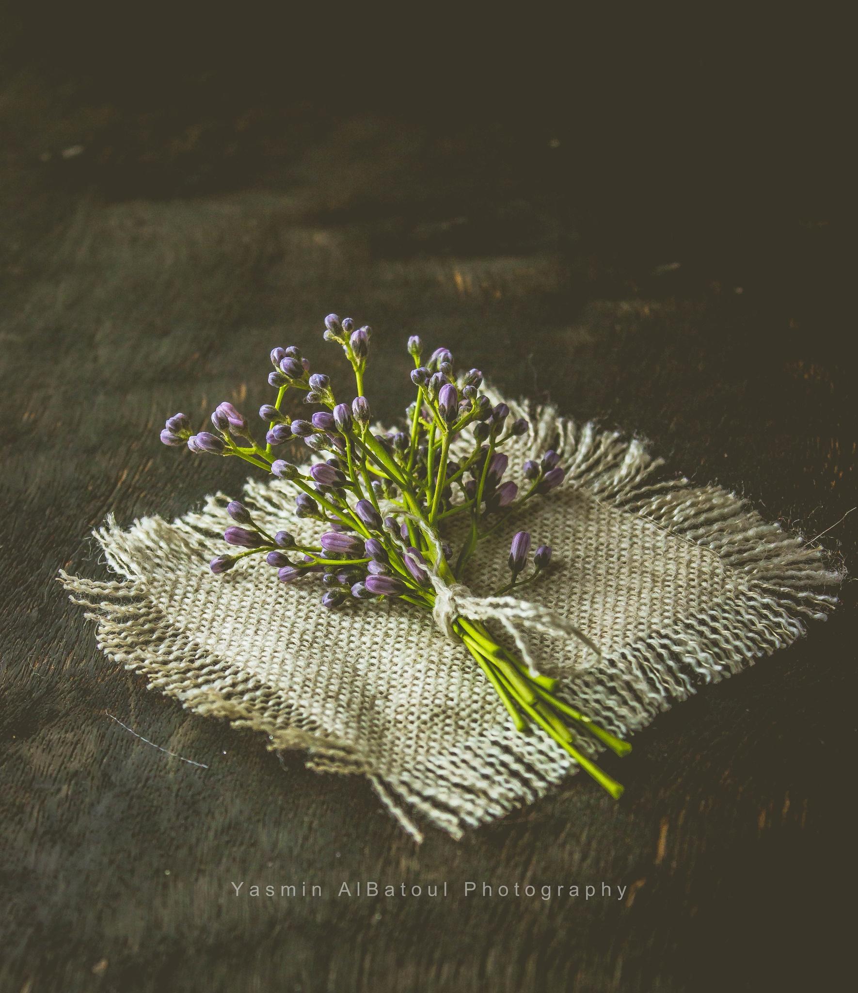 still life  by yasmin.albatoul