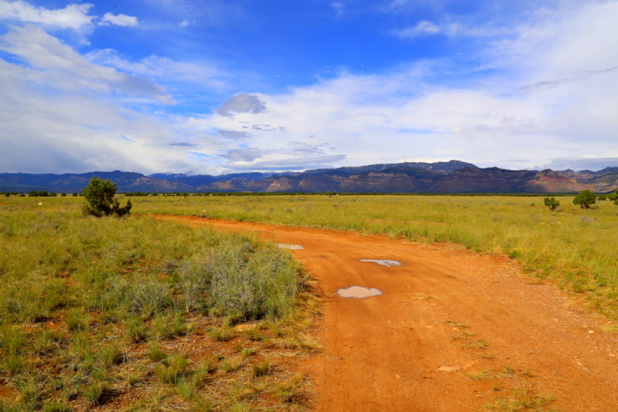 Red Dirt Road to the Book Cliffs by Caiti Kennedy