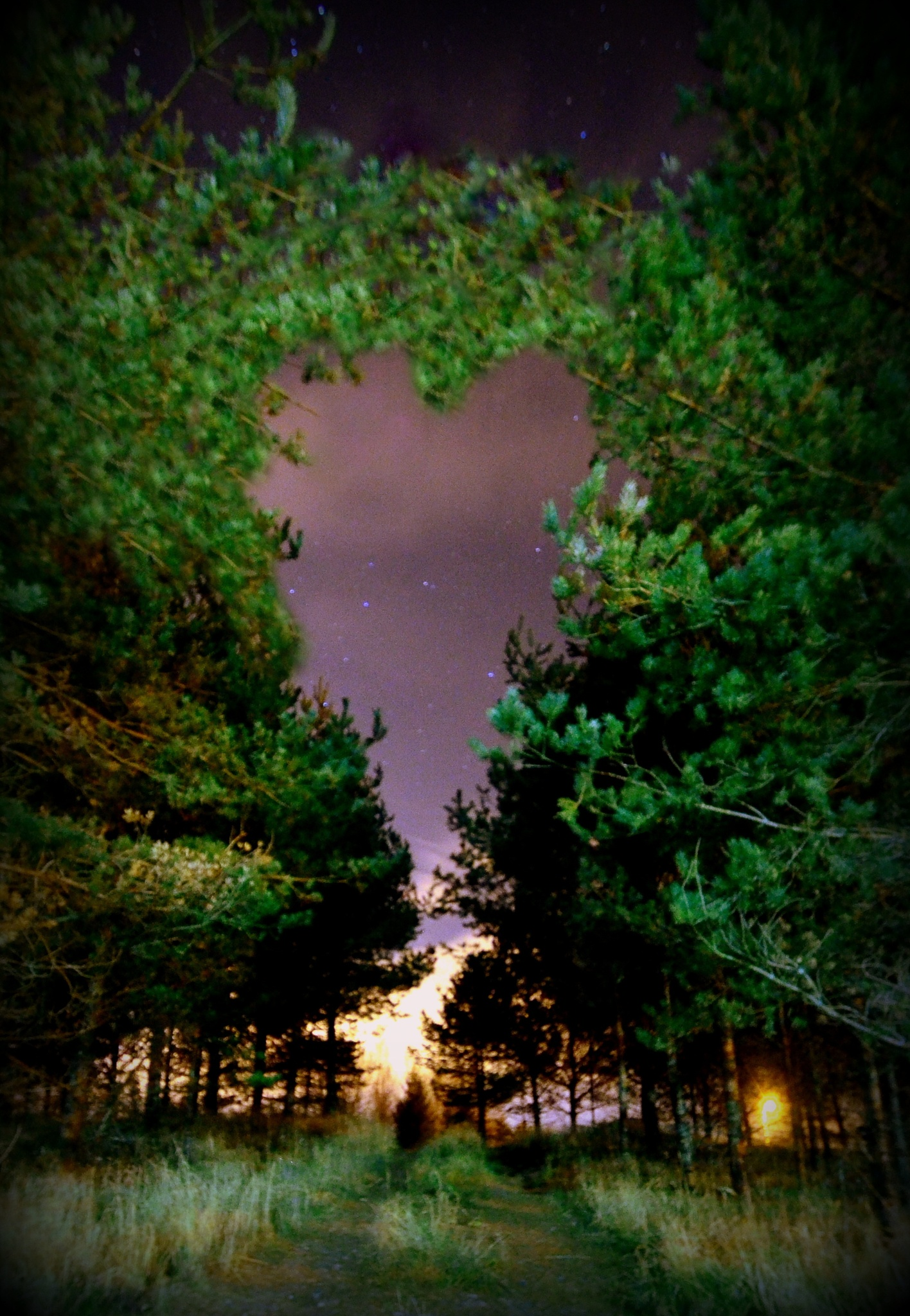 A heart by rollepersson