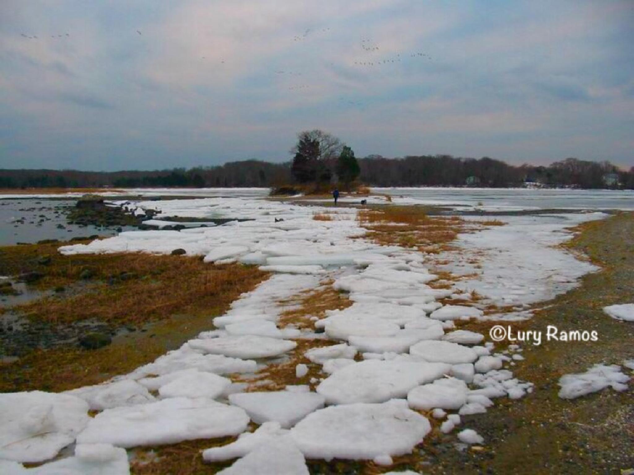 Winter Road by Lury Ramos