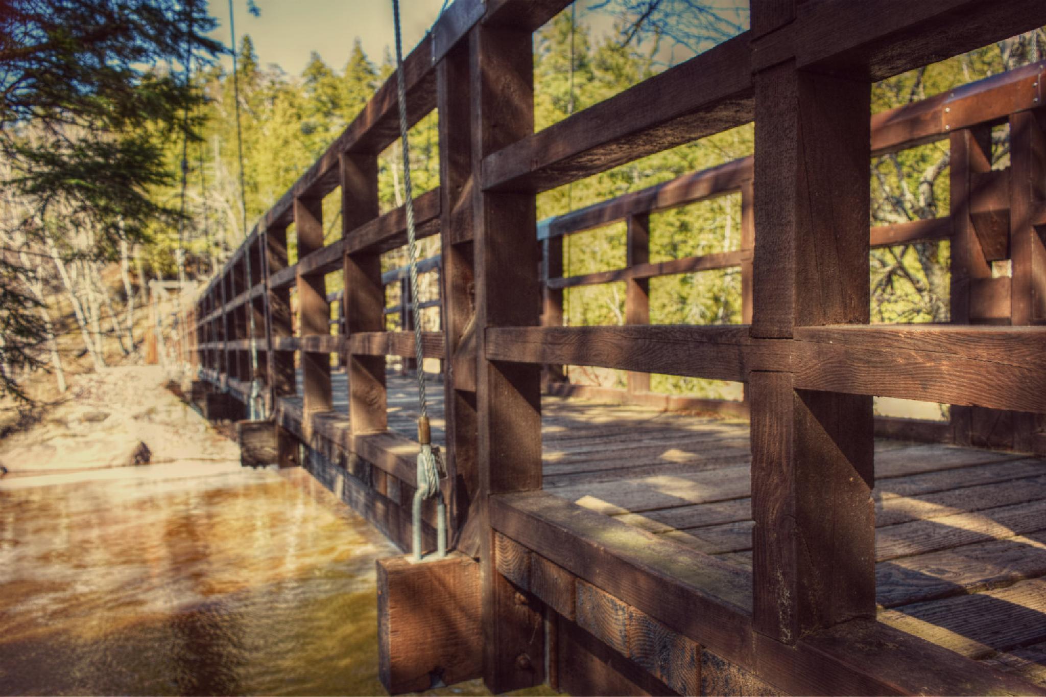 Footbridge by Nichole Petranek