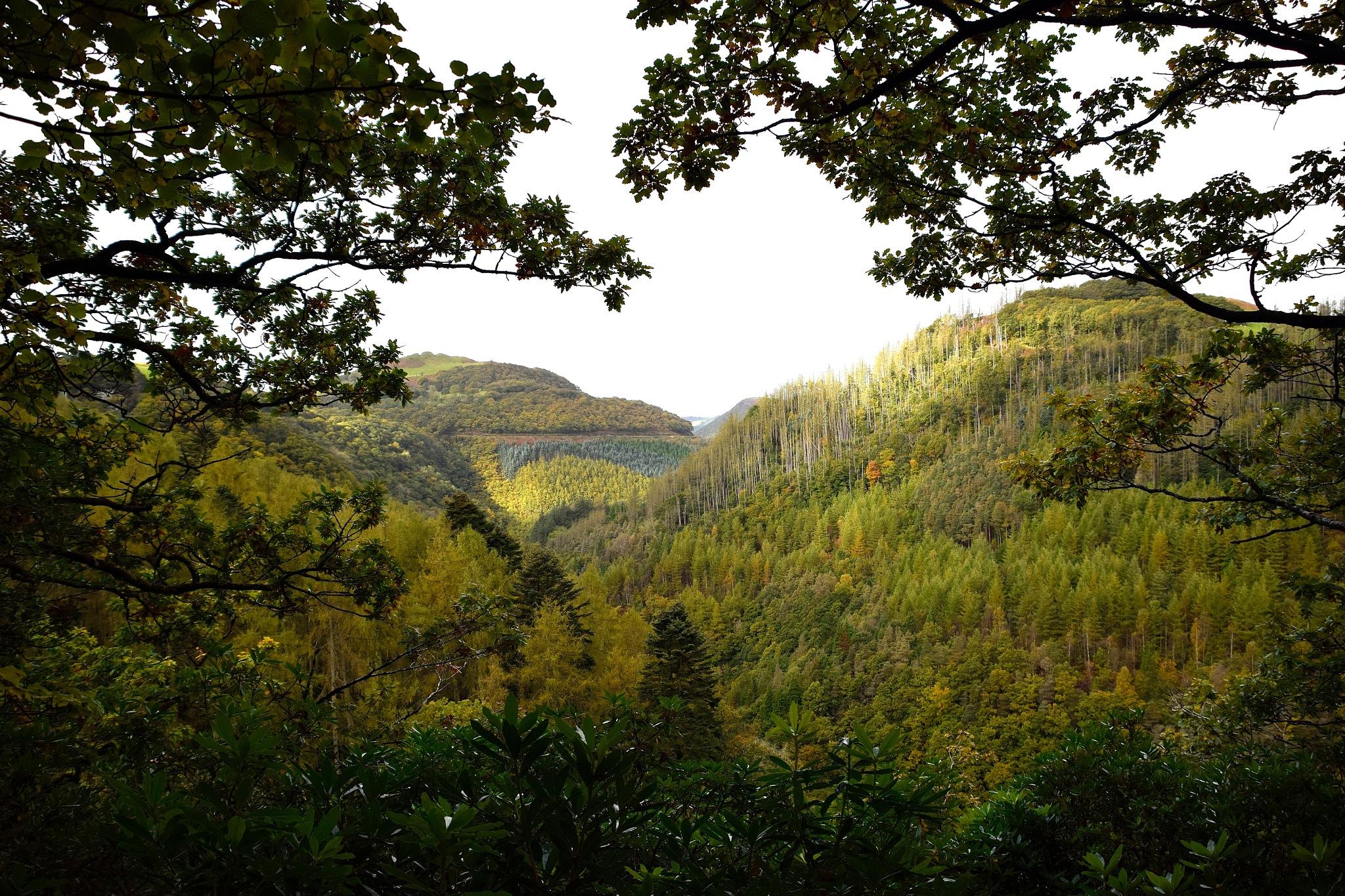 Aberystwyth  by cliff.edmundson.3