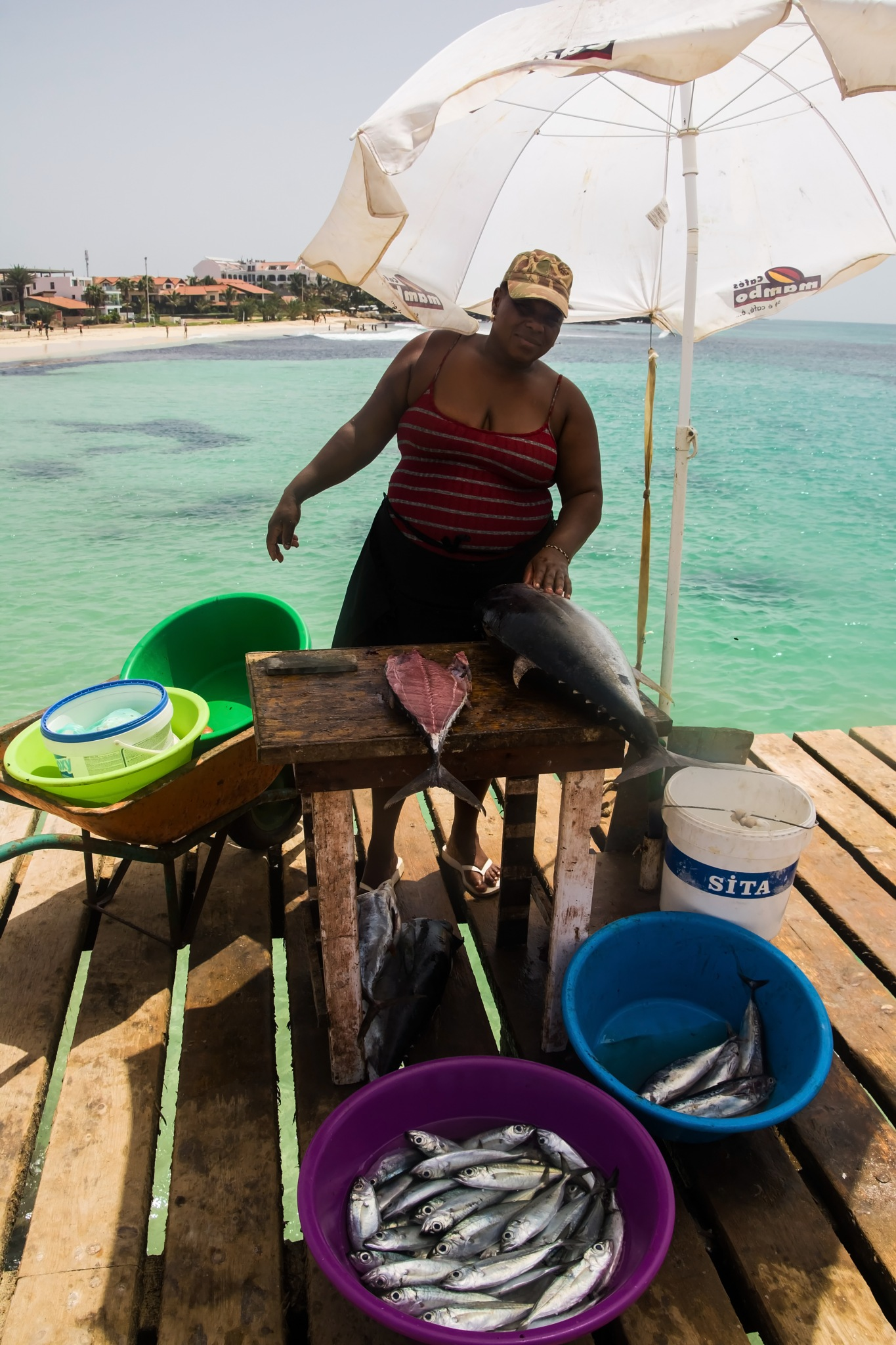 Selling fish by MADOLDIE