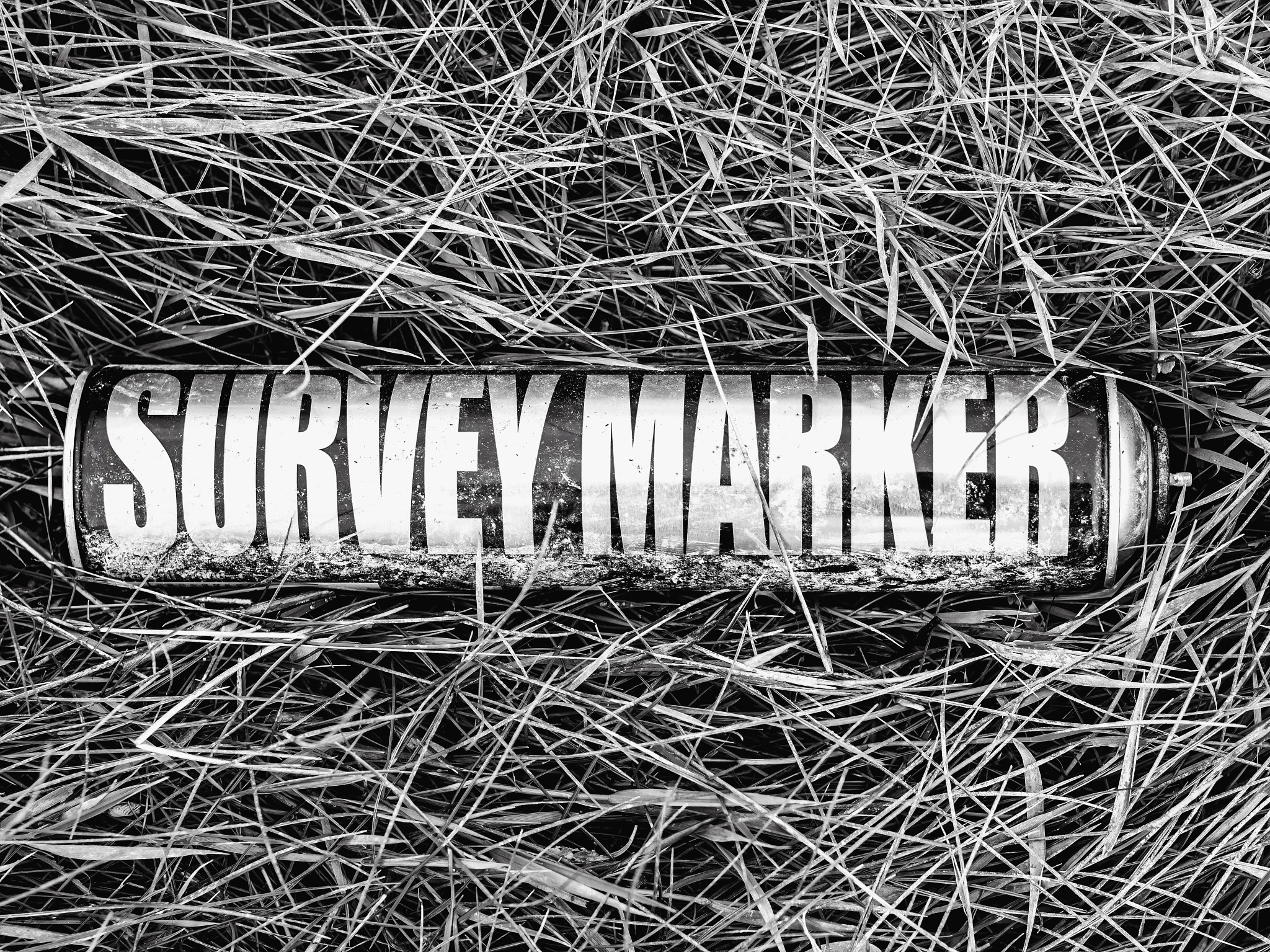 Survey marker by MADOLDIE