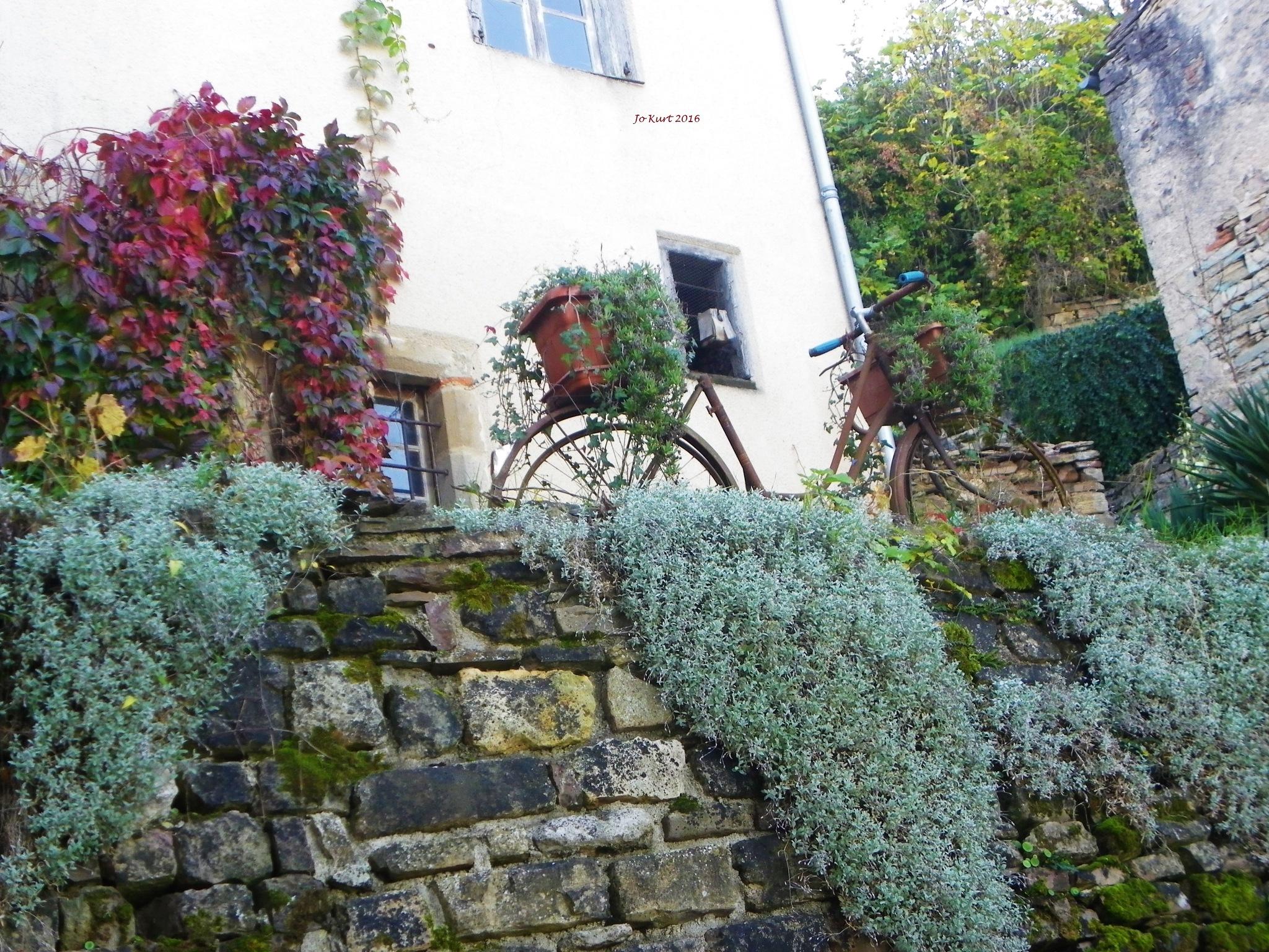 green bike by jo.kurt.9022