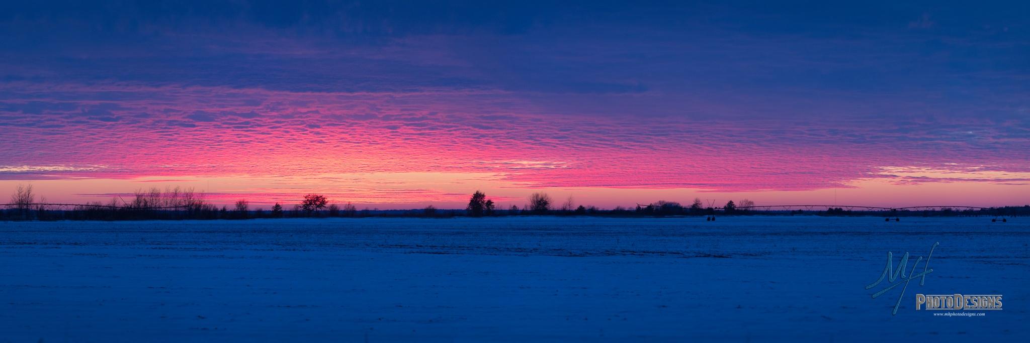 """Sunset"" by Marcus Hammitt"