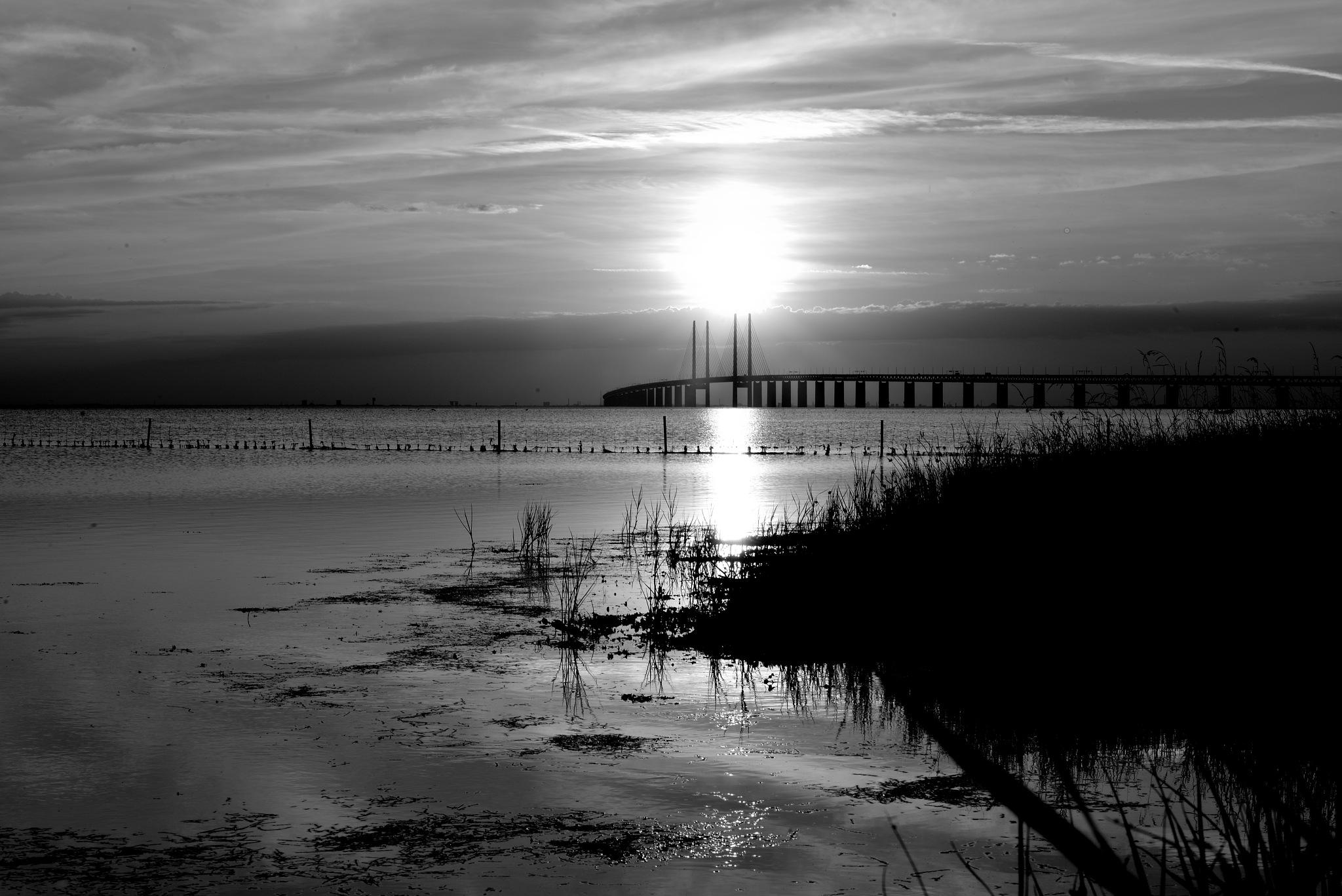Photo in Black and White #öresunds bridge #bridge