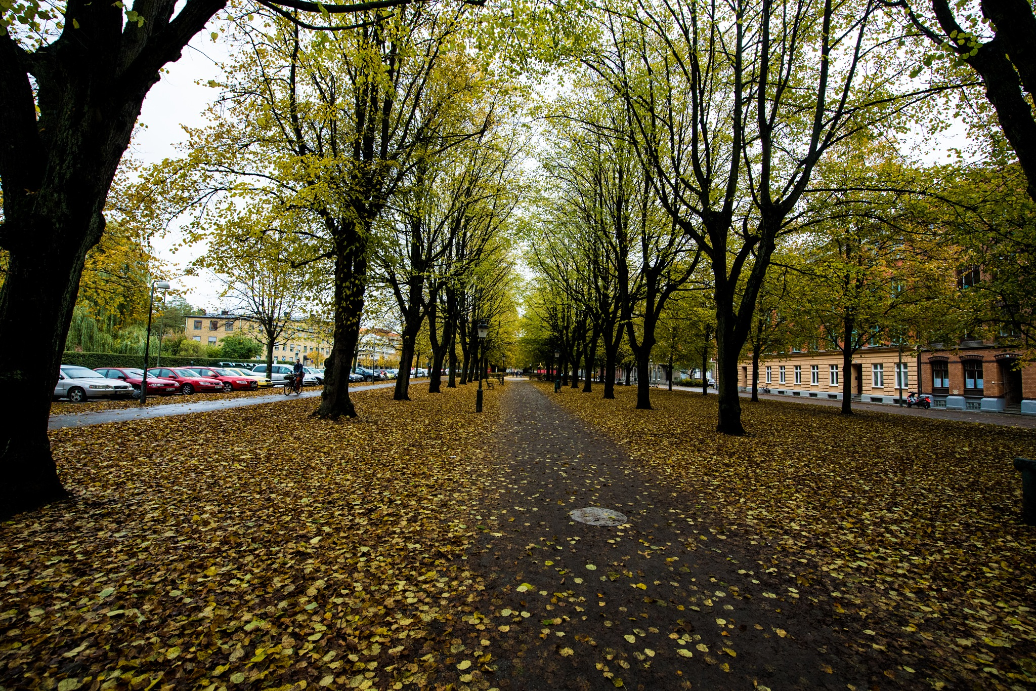 Autumn in Malmo with wide angle by lars-goran6