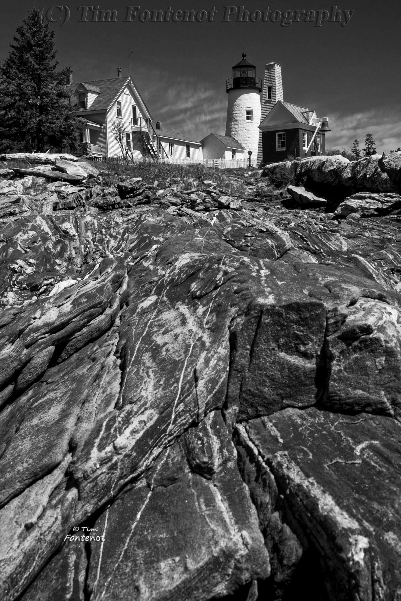 LIGHTHOUSE ON GRANITE - 2 by Timothy Fontenot