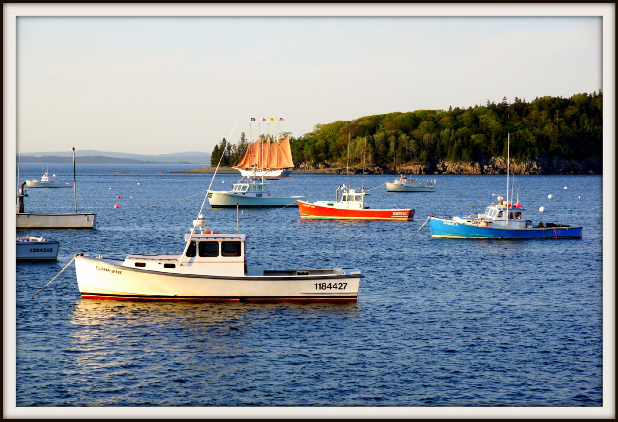Bar Harbor Maine by Mustafa.Arshad.Taru's Photography