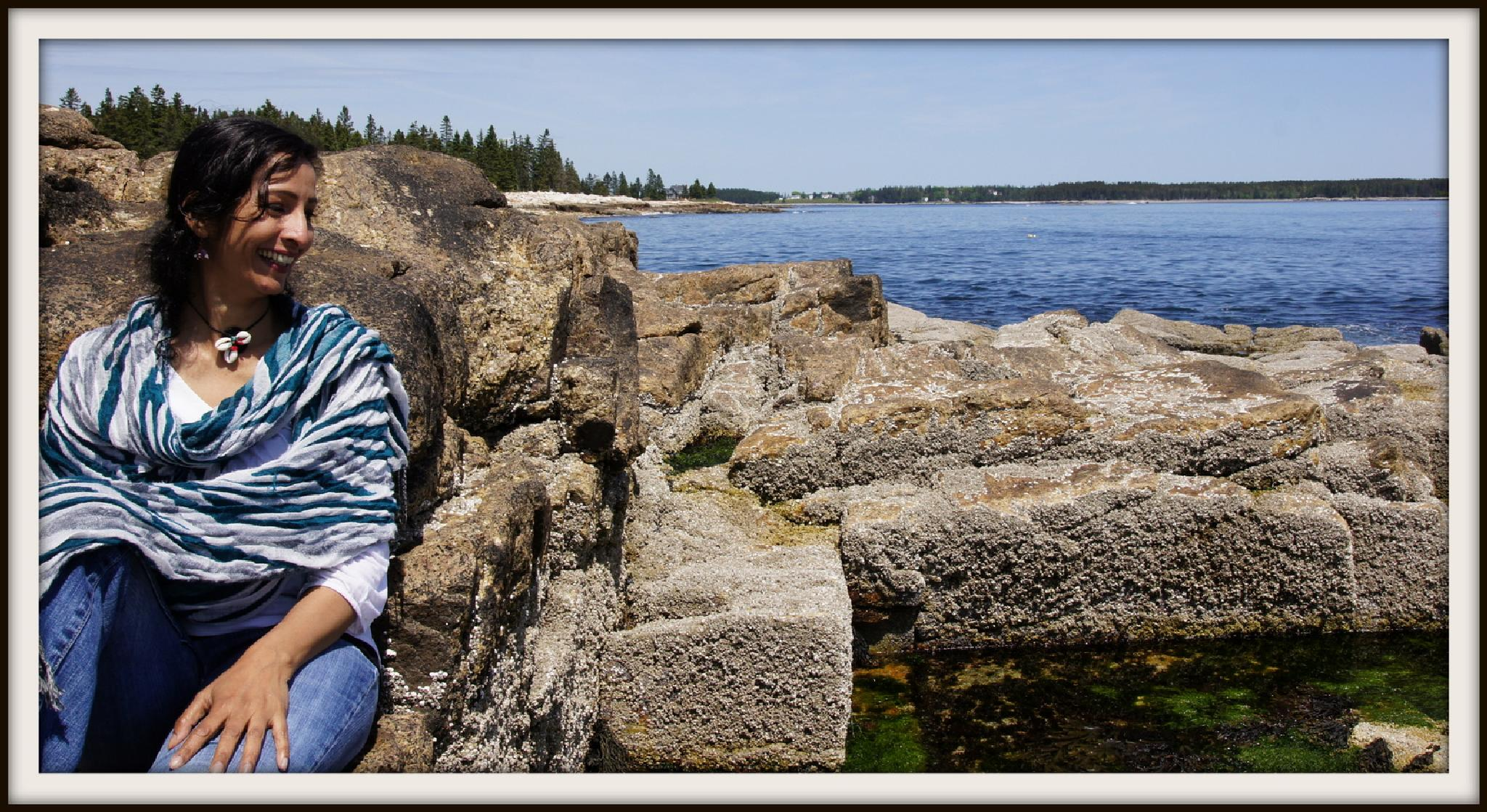 Baily's Island Maine by Mustafa.Arshad.Taru's Photography