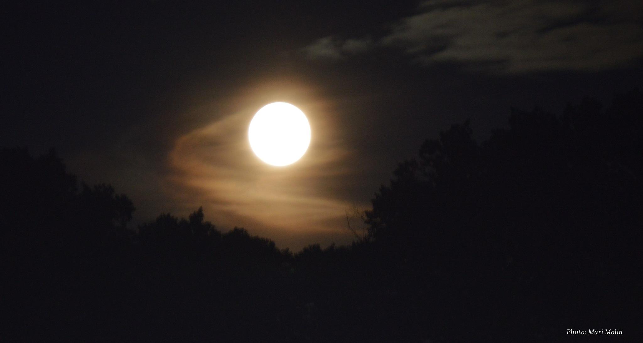 The full moon by Mari Molin