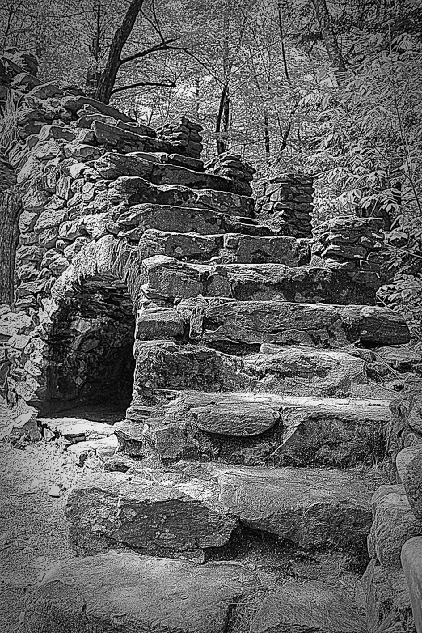 Madame Sherri's Castle Ruins by  Janice Lebrun