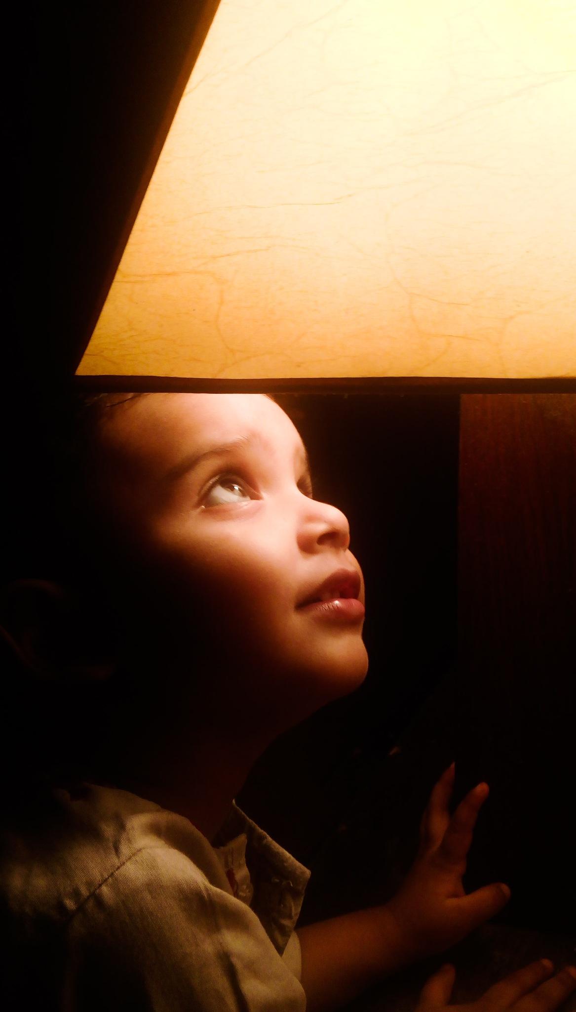 curiosity by Waqar Ghori