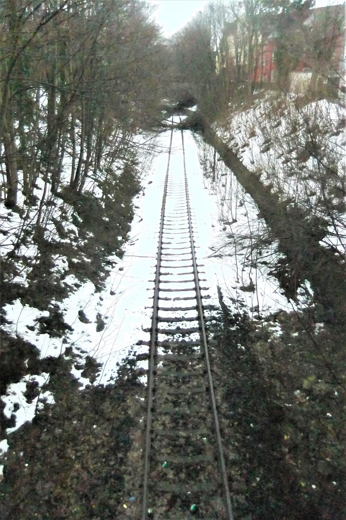 Lost railroad tracks in Flensburg  by Oliver Neumann