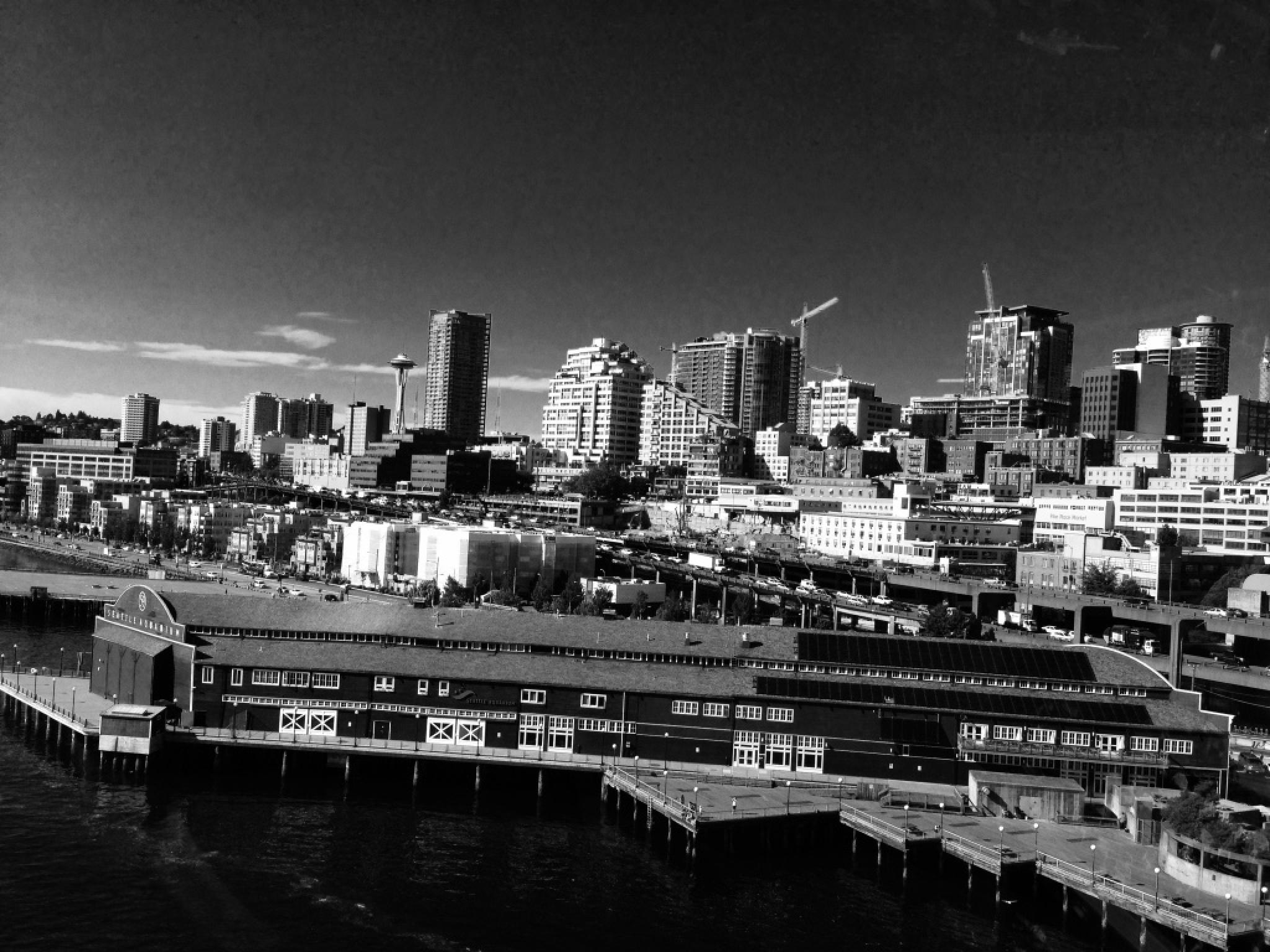 Seattle Cityscape by samantha.jenkins.5030