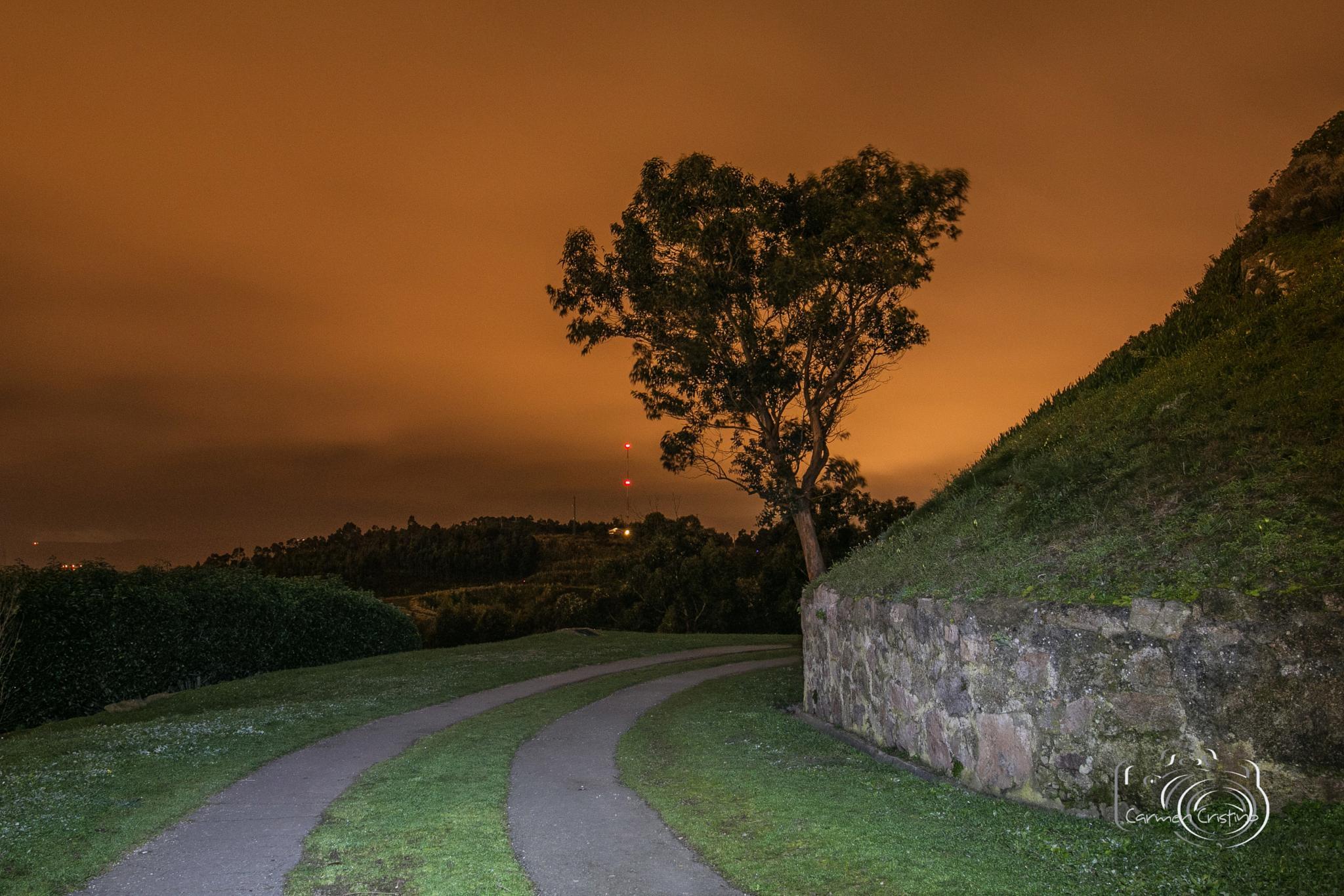 Walking at night by carmen_cristino