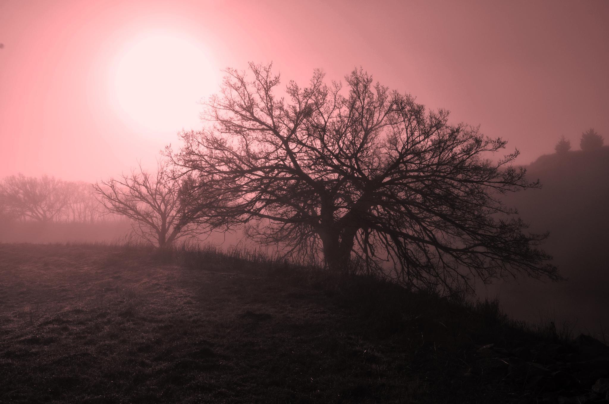 Oklahoma sunrise by keith.haley.984