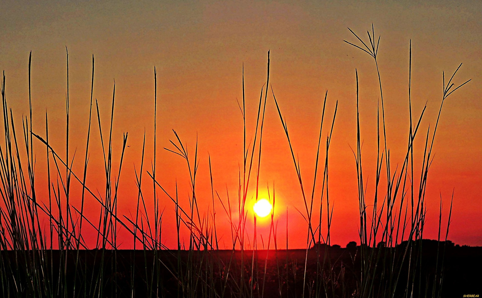 MCLEAN COUNTY SUNSET by sherilyn.malmbergsanford