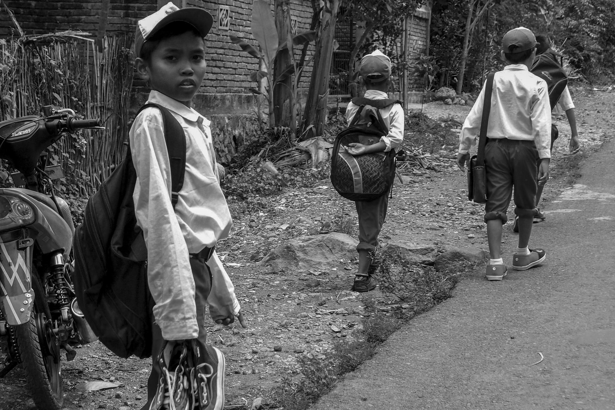 going to school by amelia bertmar