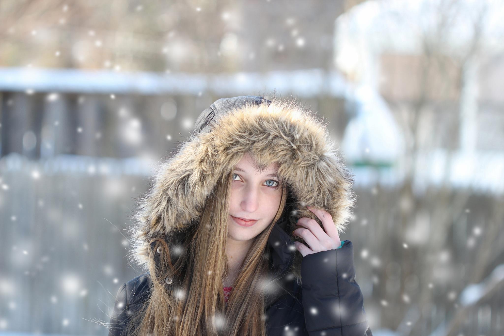 snowy day by Jennifer Nilsen
