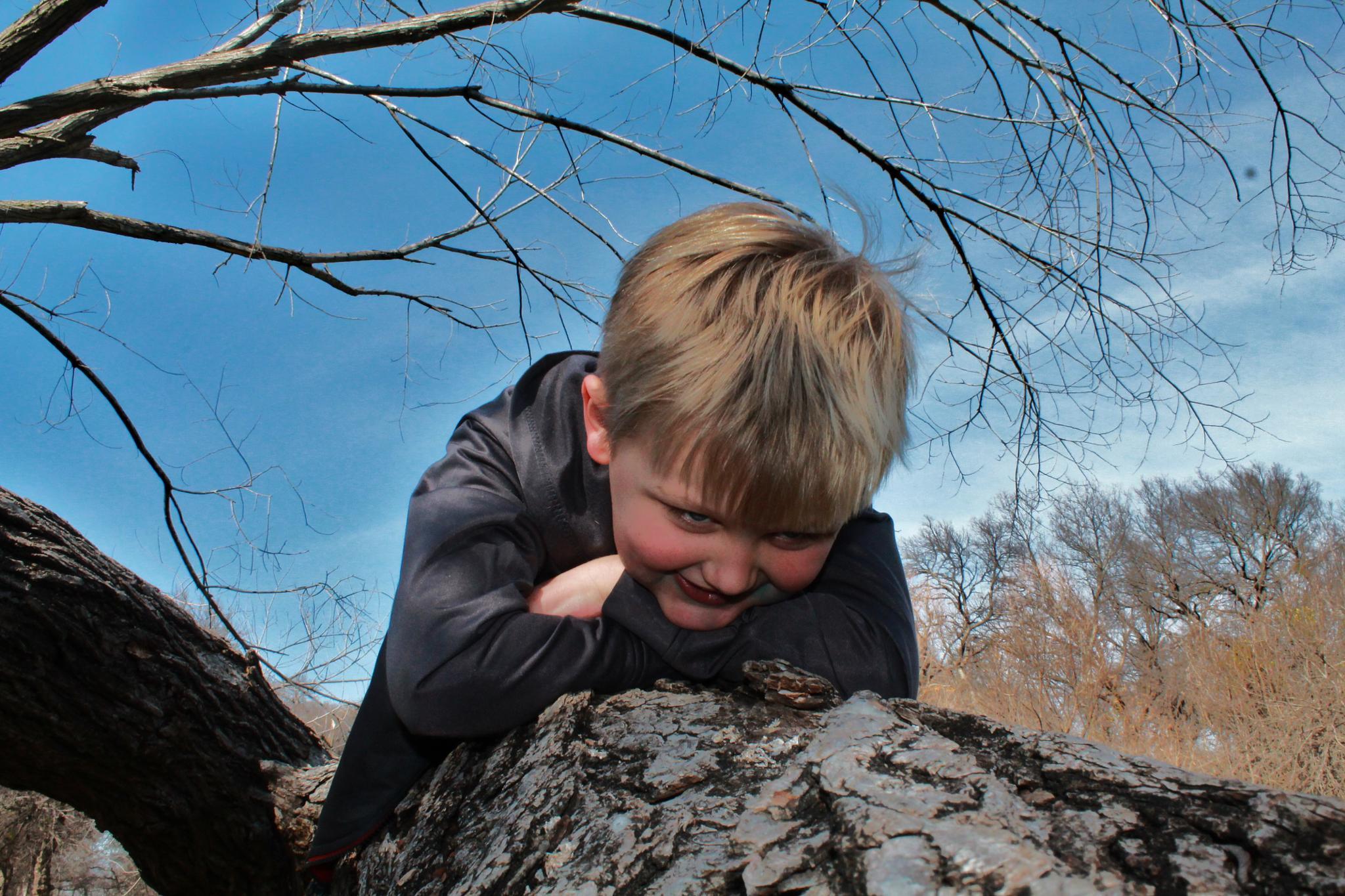 Boy on Tree by Patrick.D.Wentworth