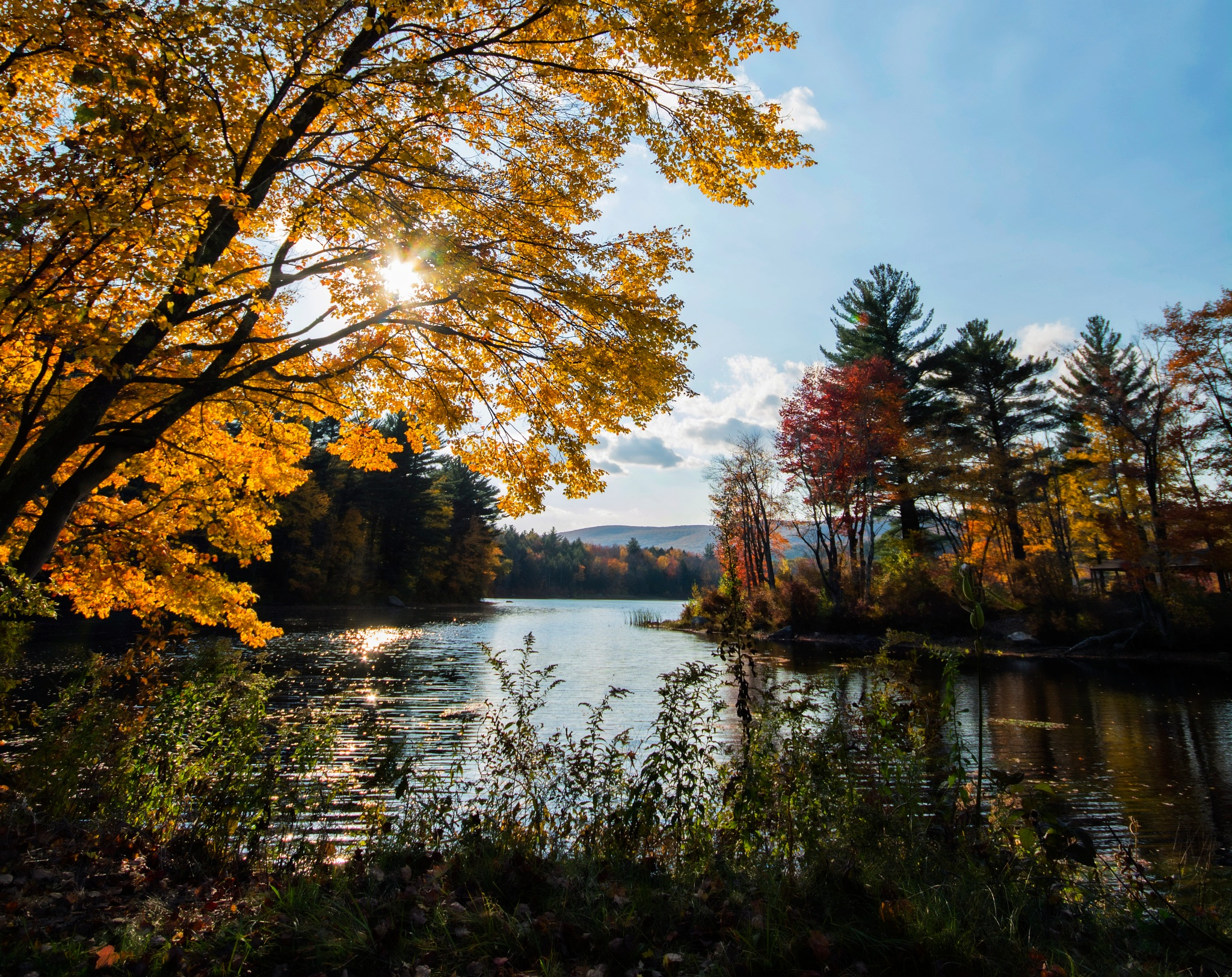 Fall in Vermont by sue hartman