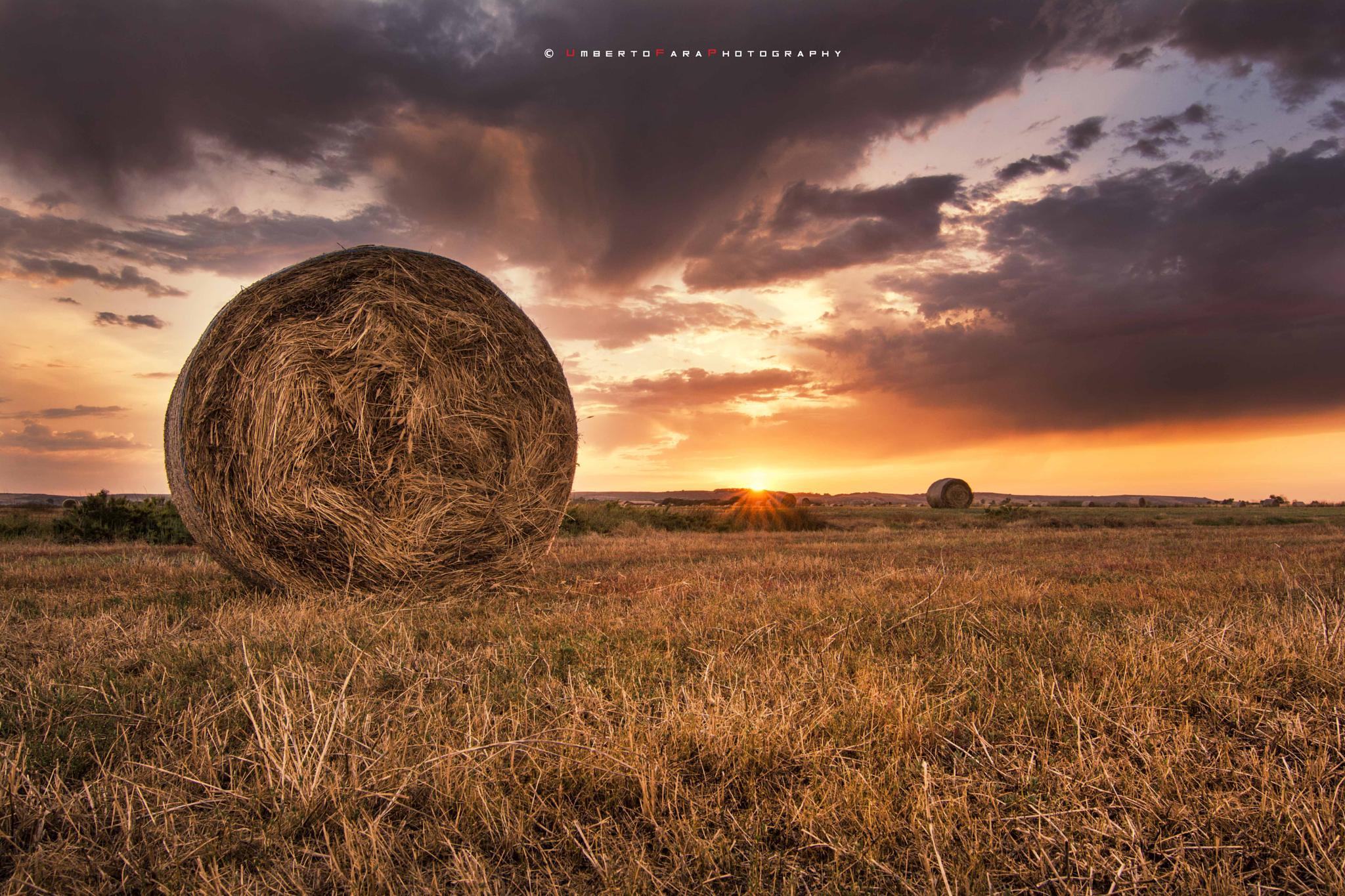 sunlight by Umberto Fara Photography