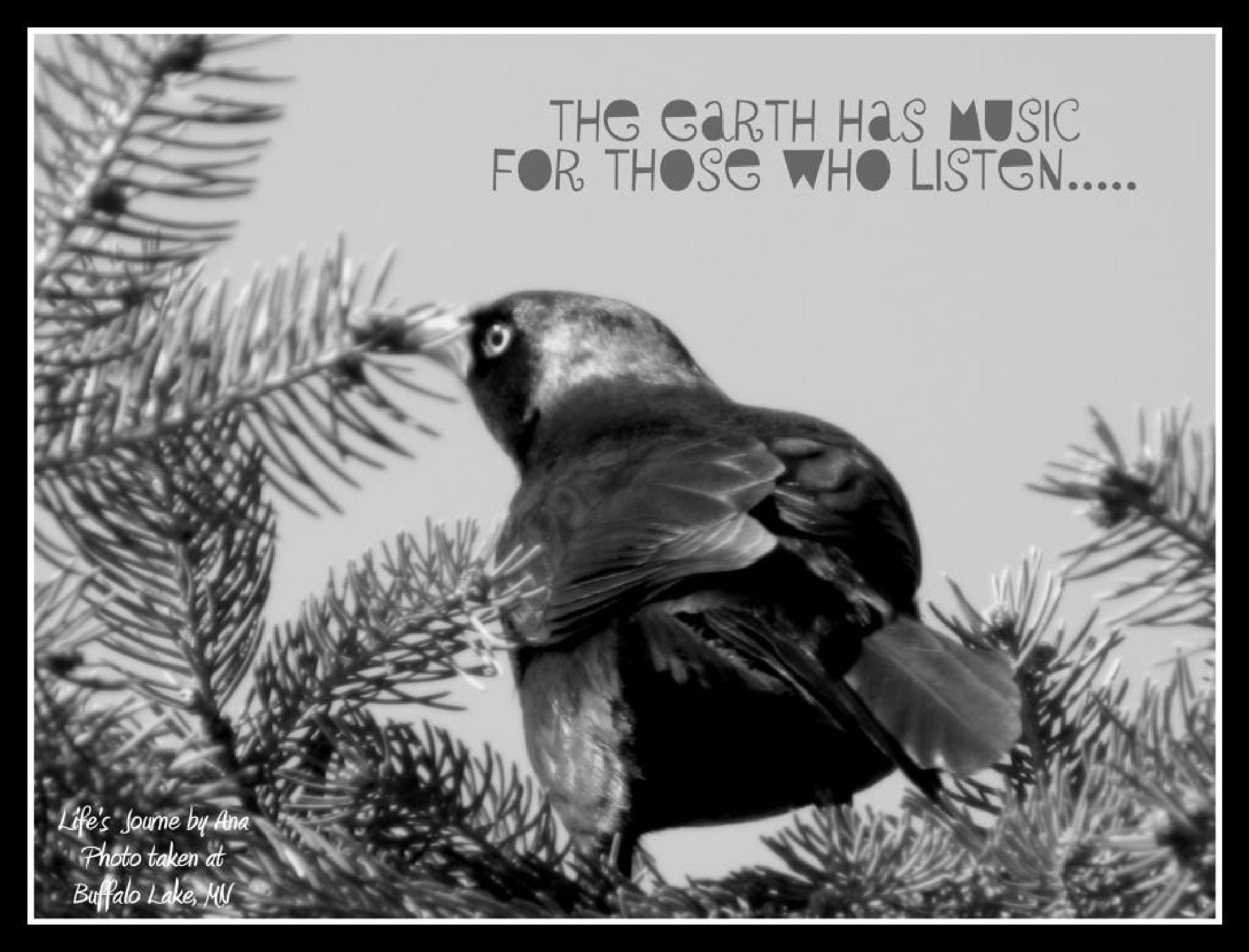 EarthHasMusic by ana.ogsimer