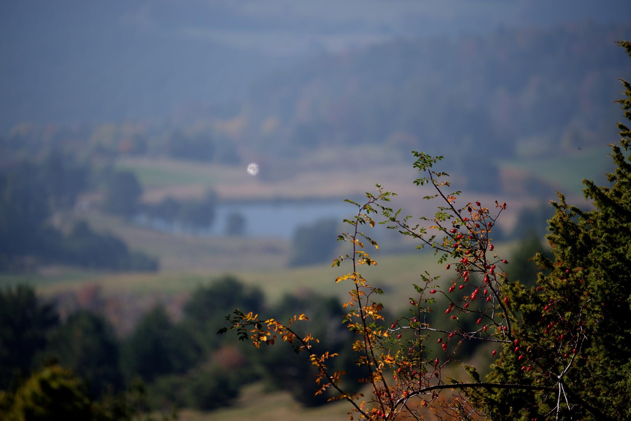 Sous le lac de Barbeyroux by bernardf142