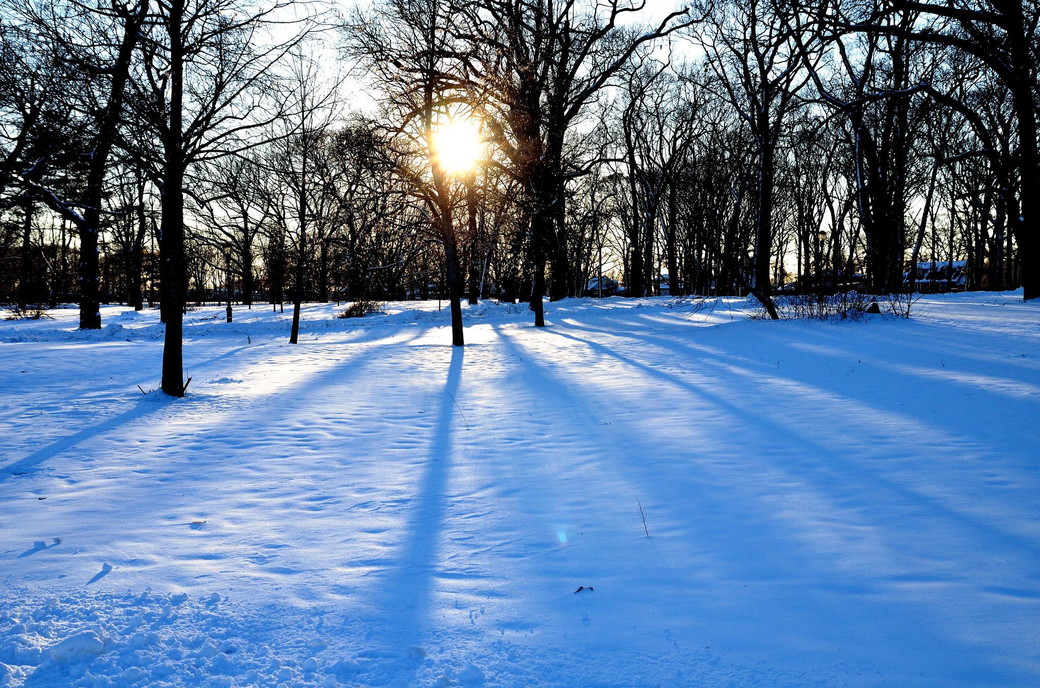 sunshine by Etonam