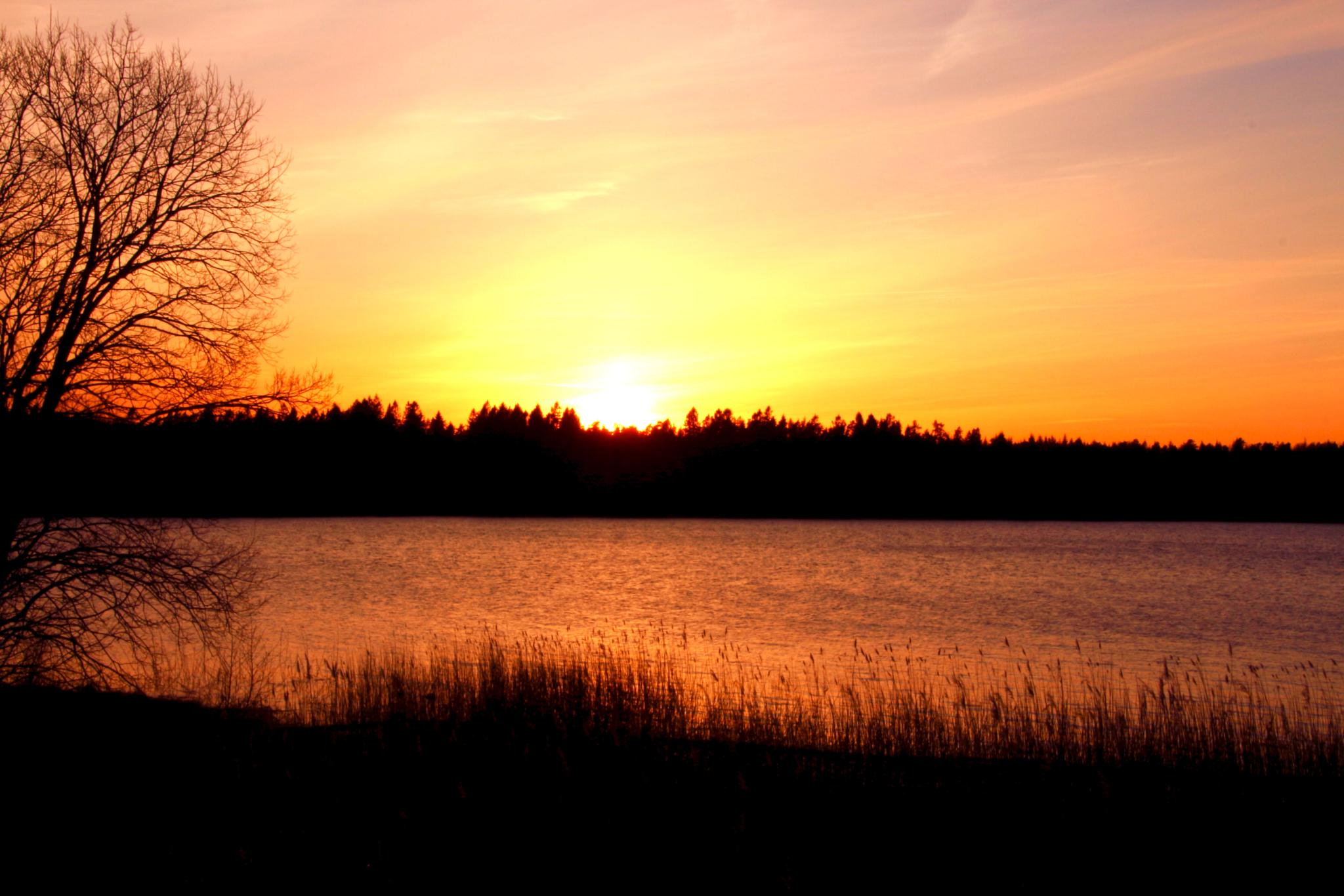 Sun dawn over lake by inge.braberg