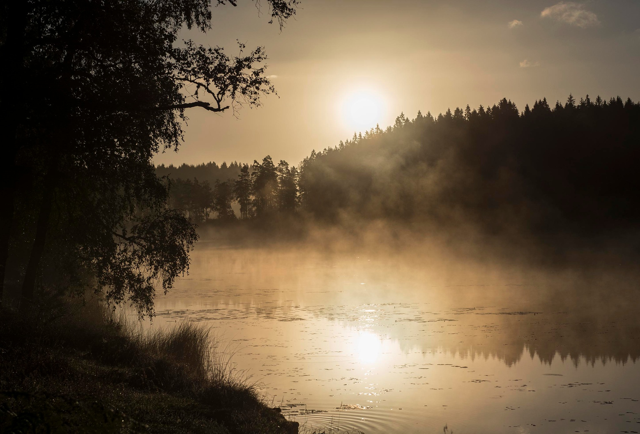 Sun and mist by Linda Persson