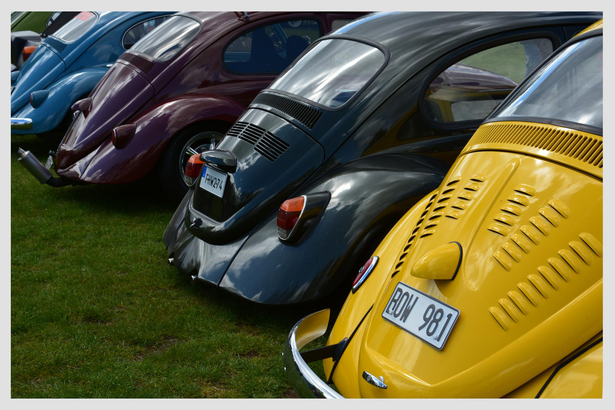 The Beetles have come to town by Linda Persson