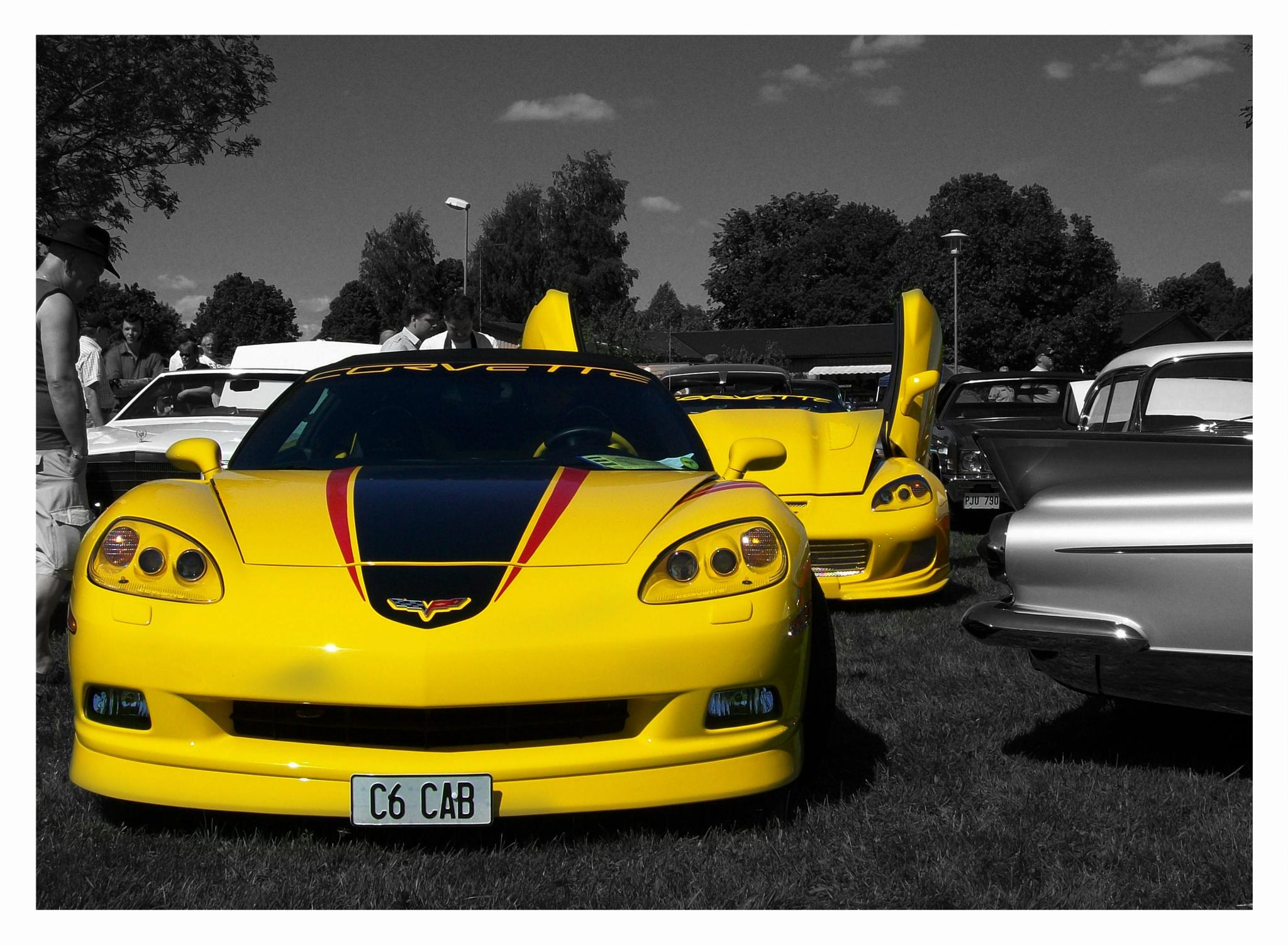 Who likes their C6 Corvette? by Linda Persson