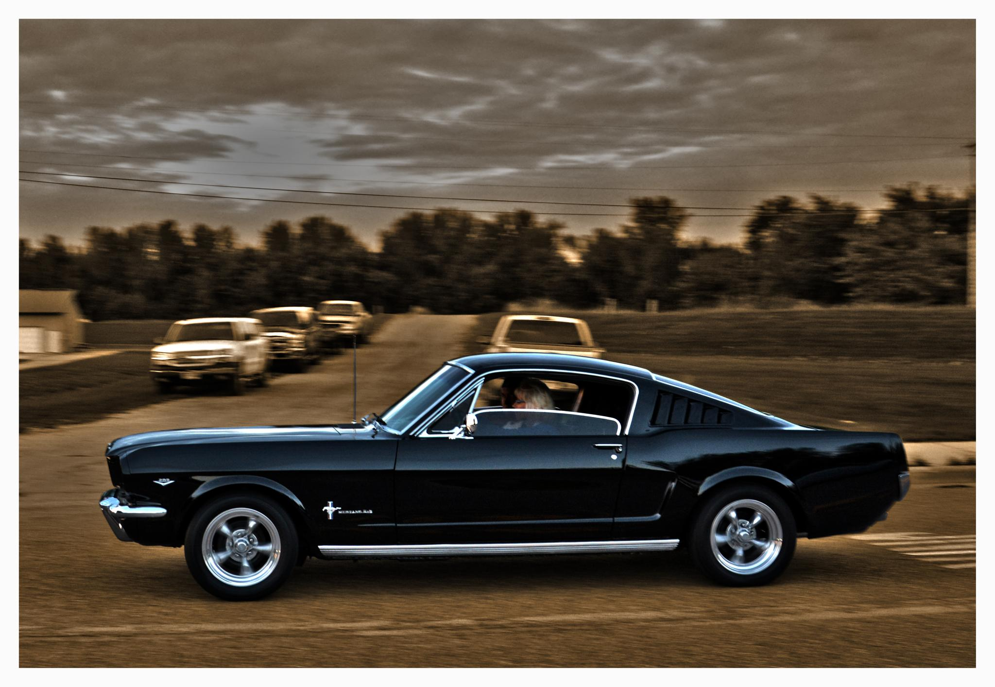Mustang fastback by Linda Persson