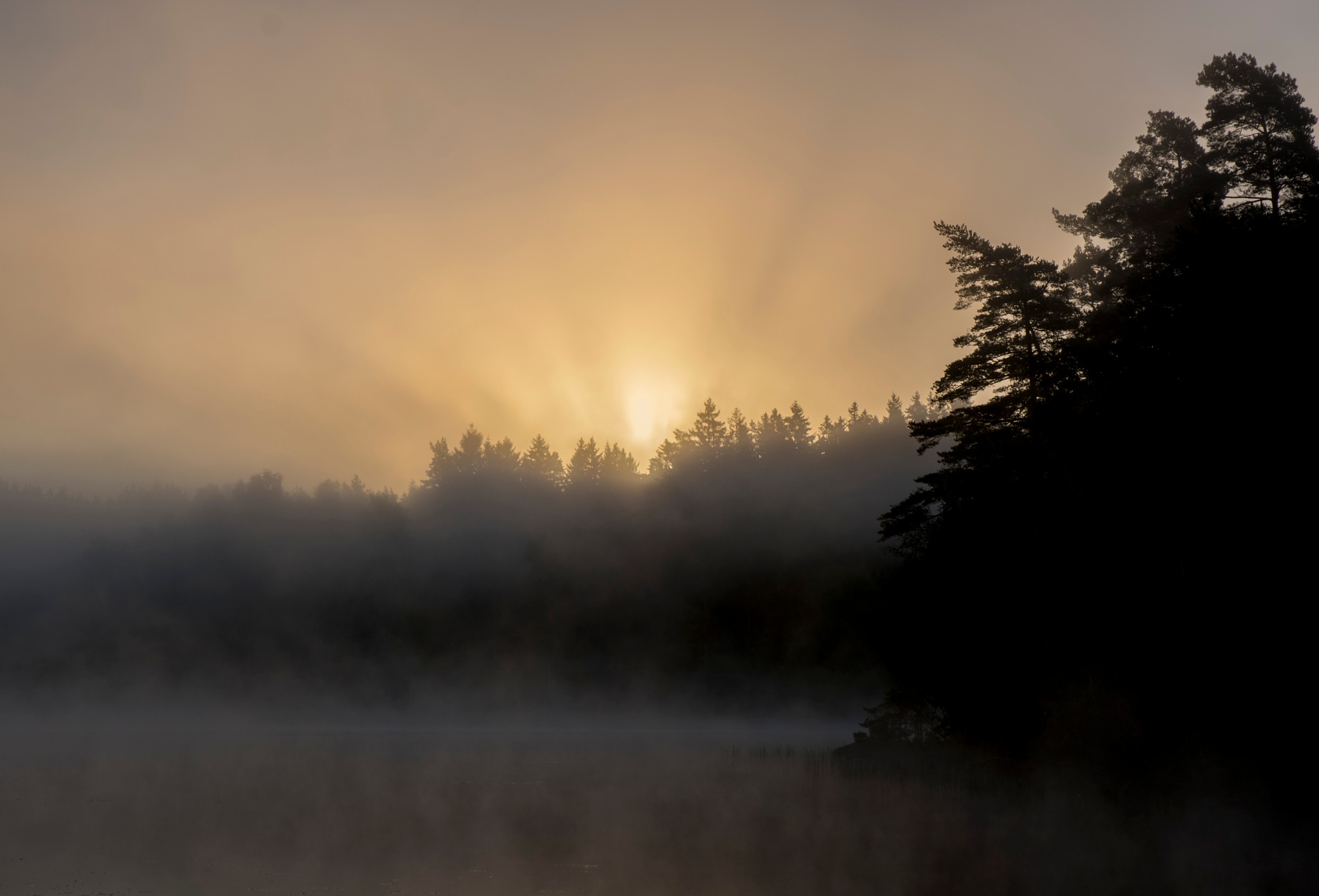 Sun rays by Linda Persson