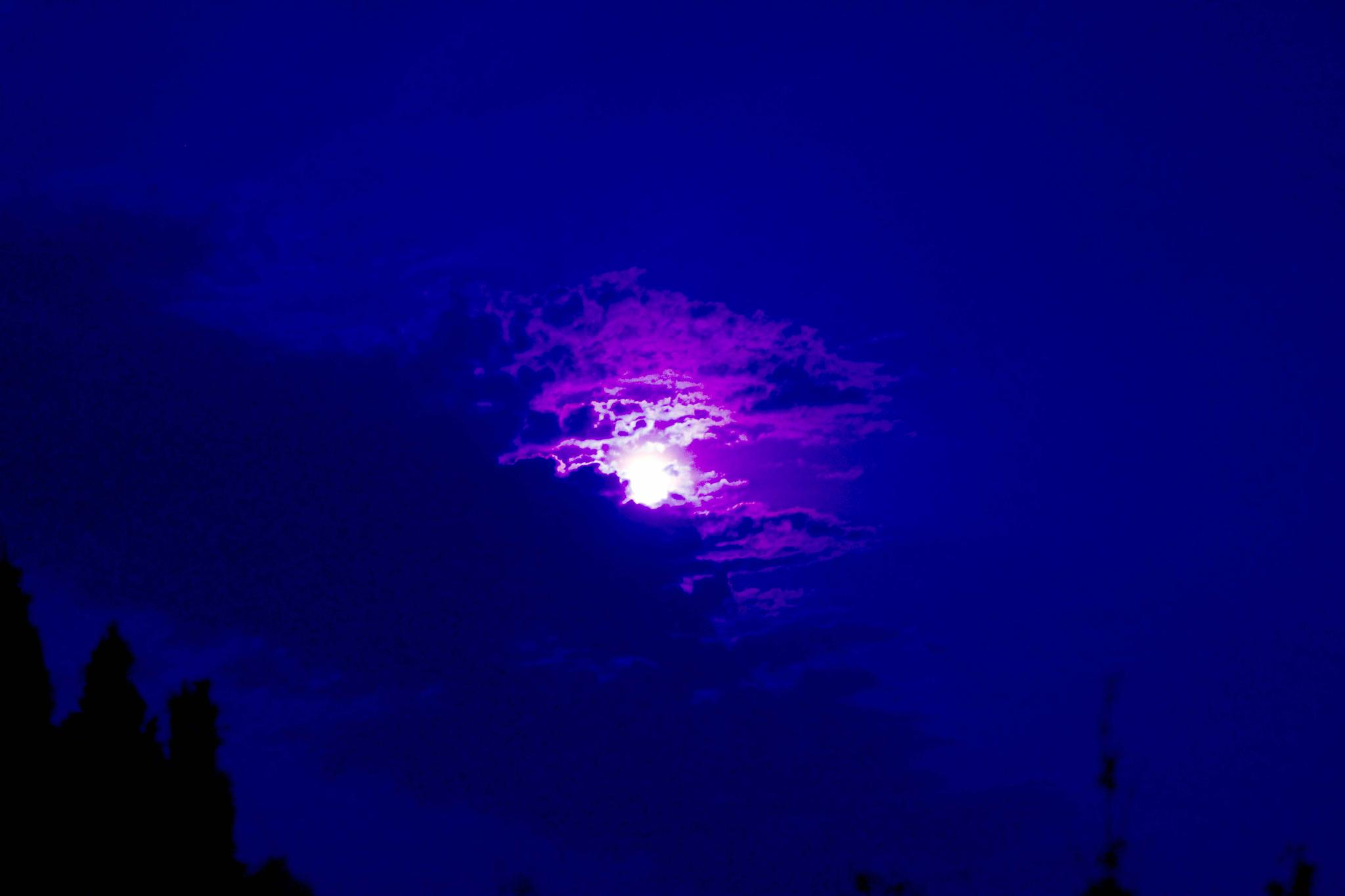 Moonlight by alijhawkins