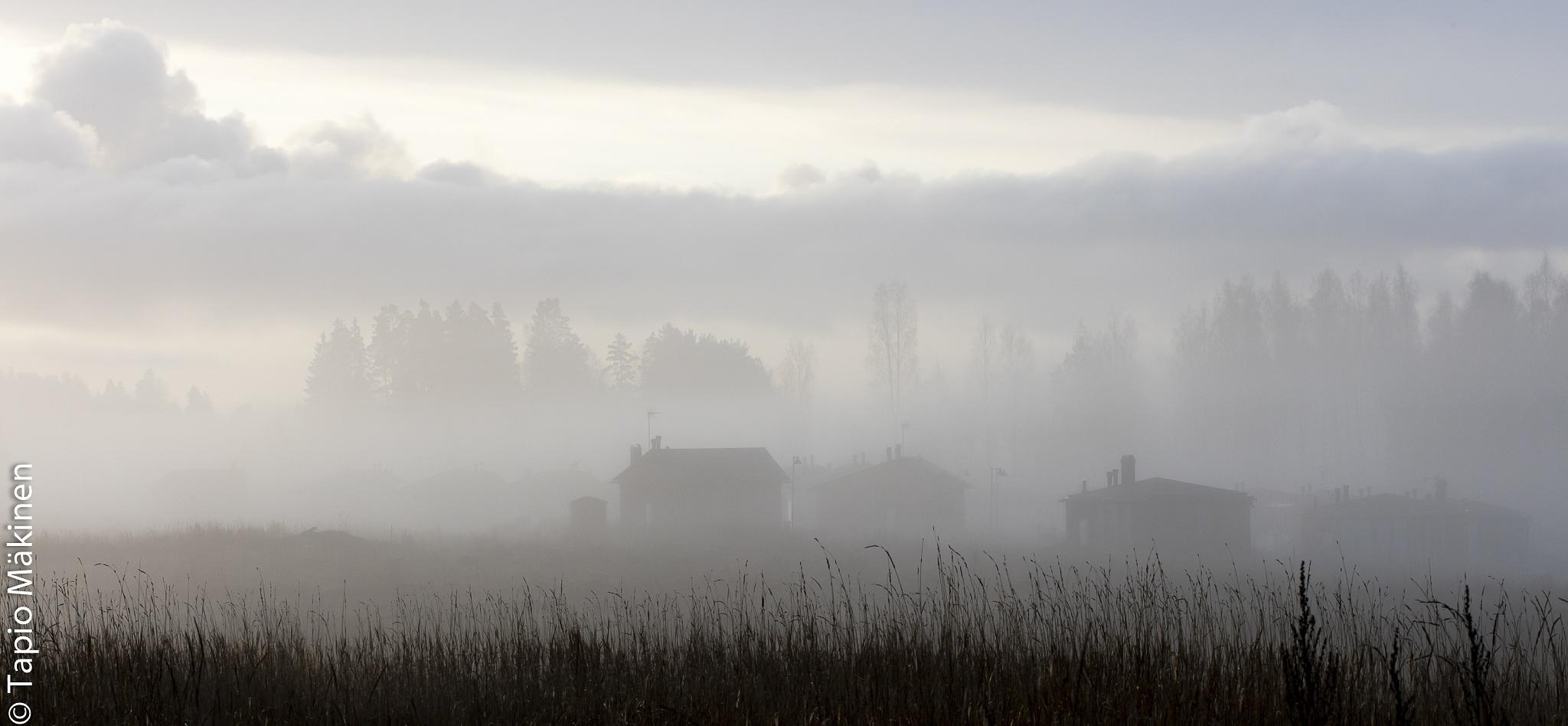 Morning view by Tapio Mäkinen