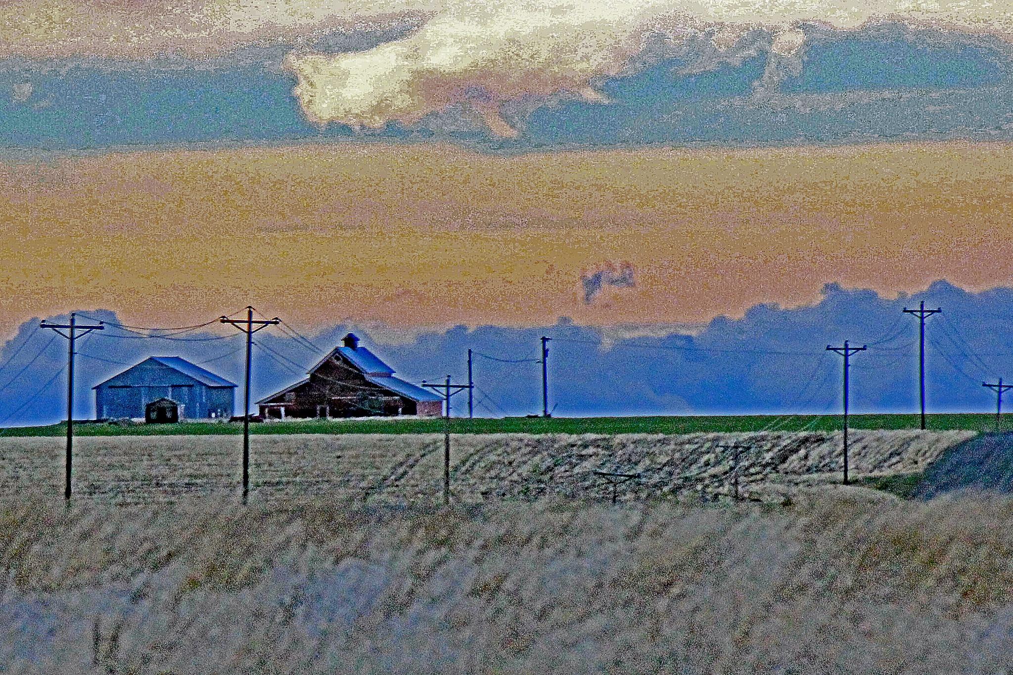 Rural Life by Matt Goll