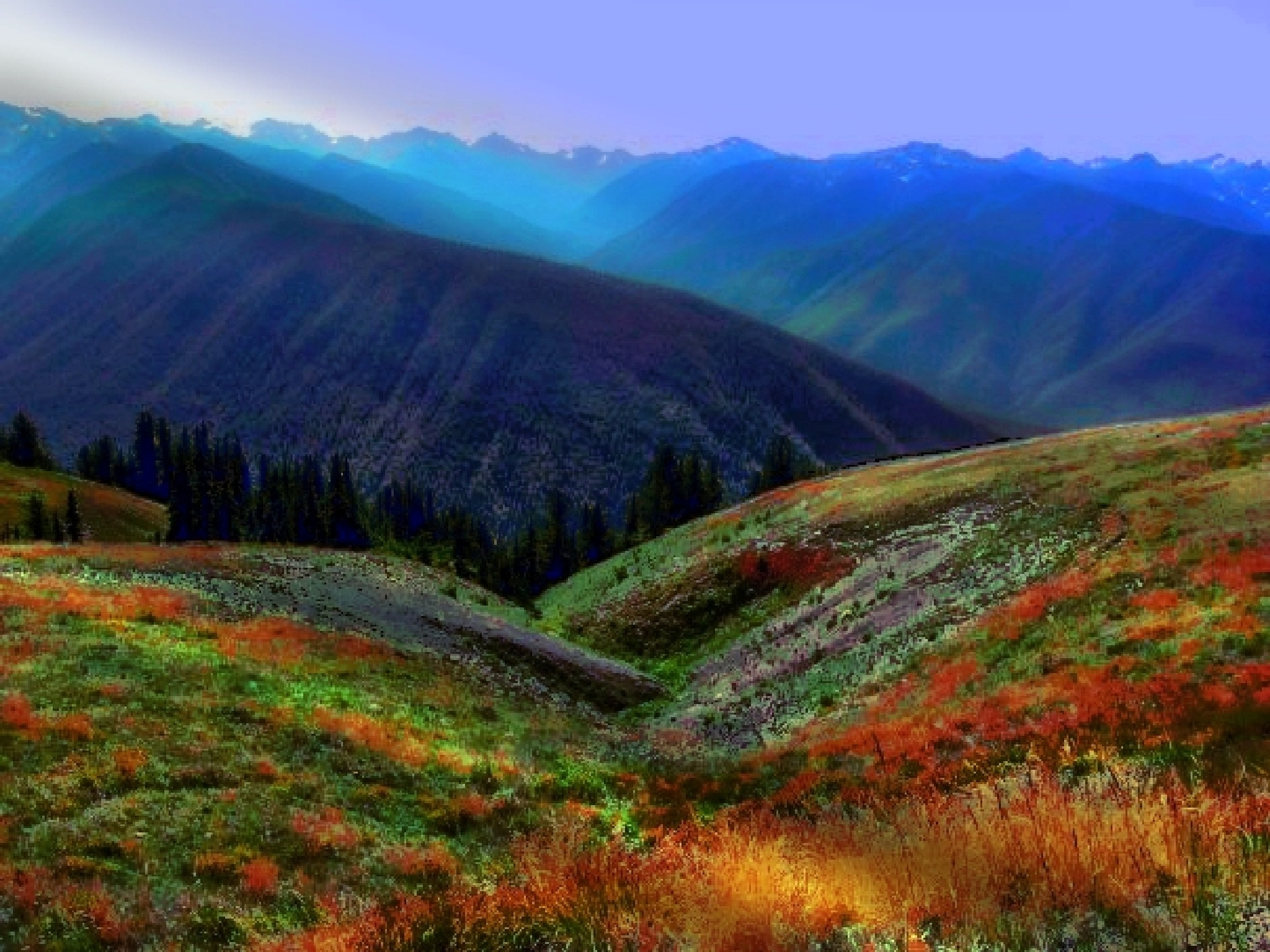 """ Hurricane Ridge"" by debra.devorenelson"