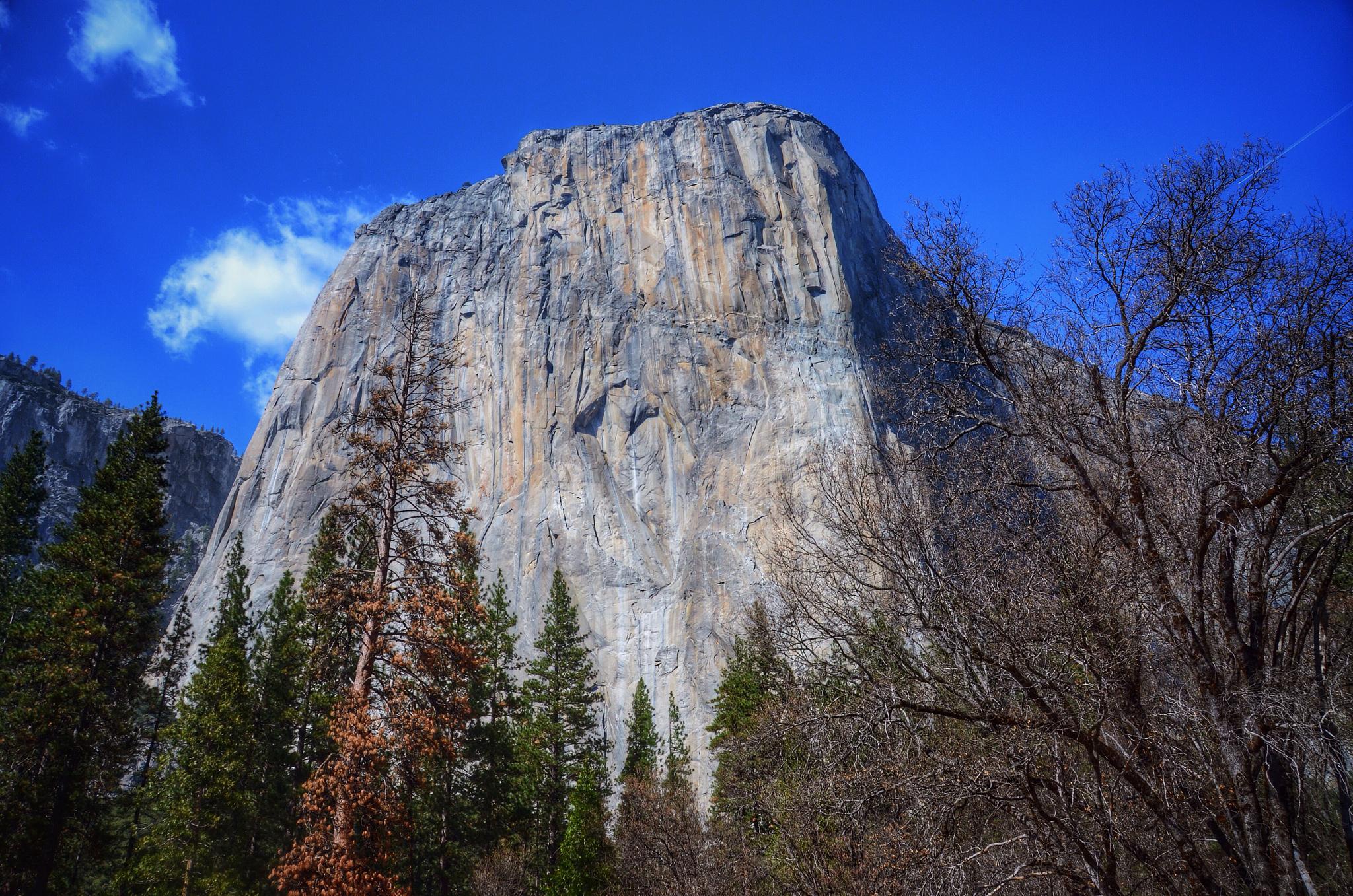 El Capitán, Yosemite by David J. Julián