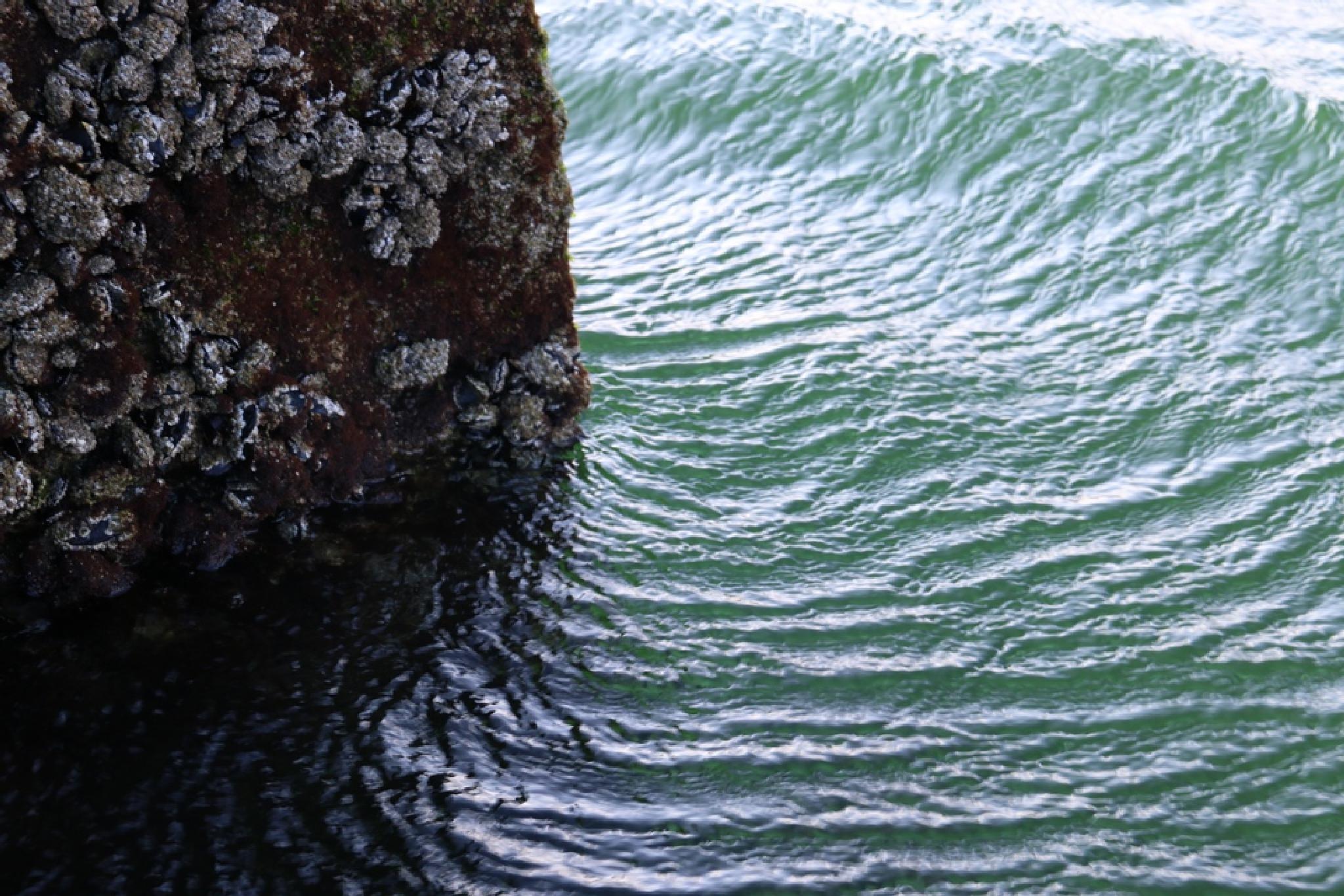 sea breeze by Con de Noro