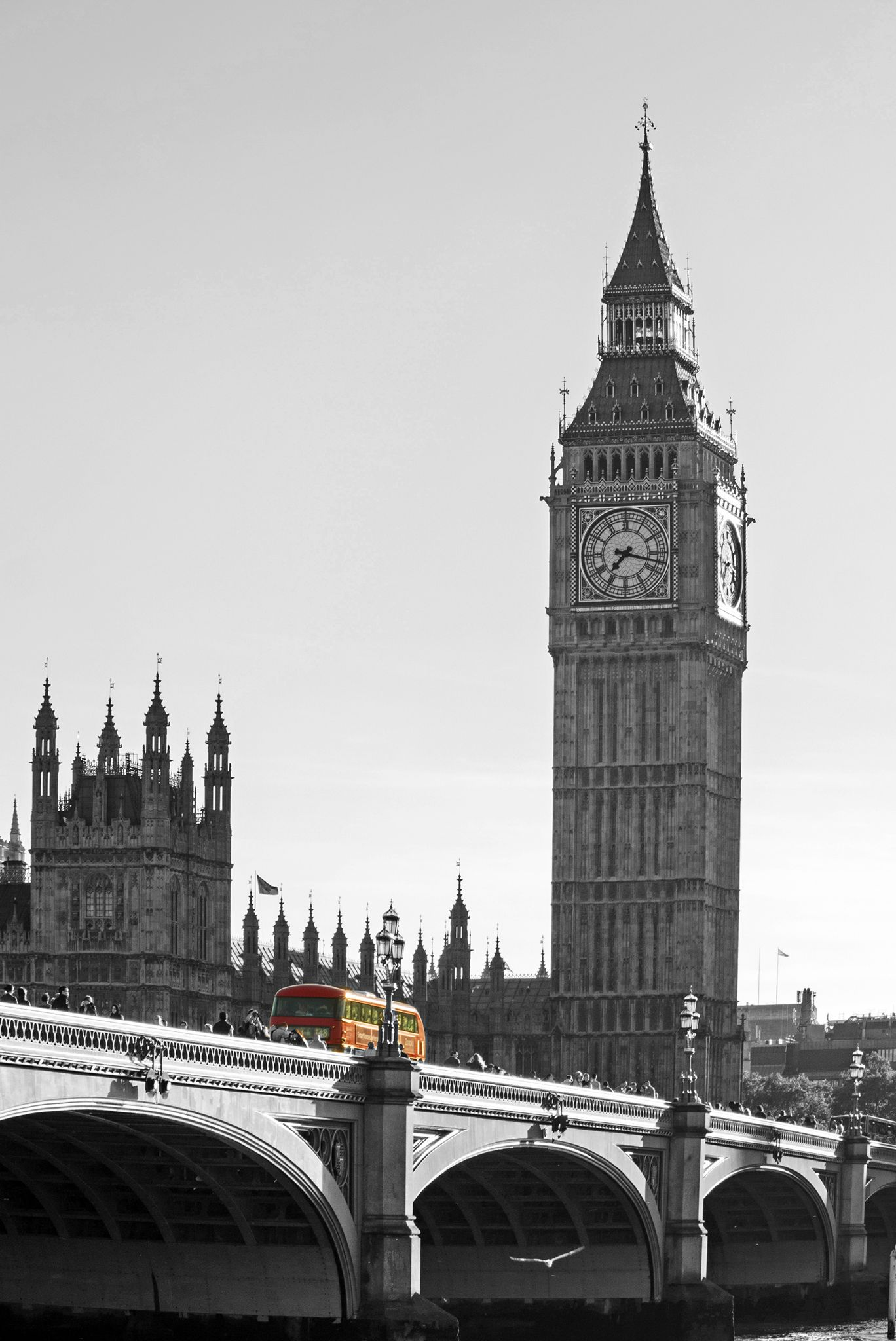 Westminster by sofiadilauro