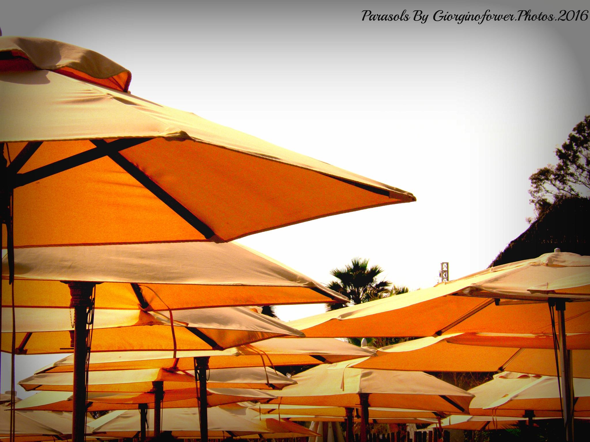 So many parasols .... by karenanne.borsani