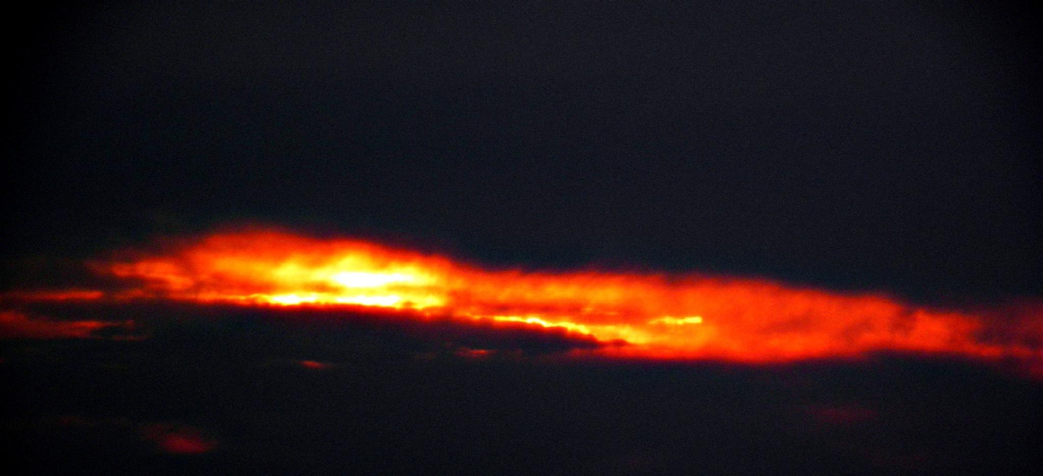 A flash...... by karenanne.borsani