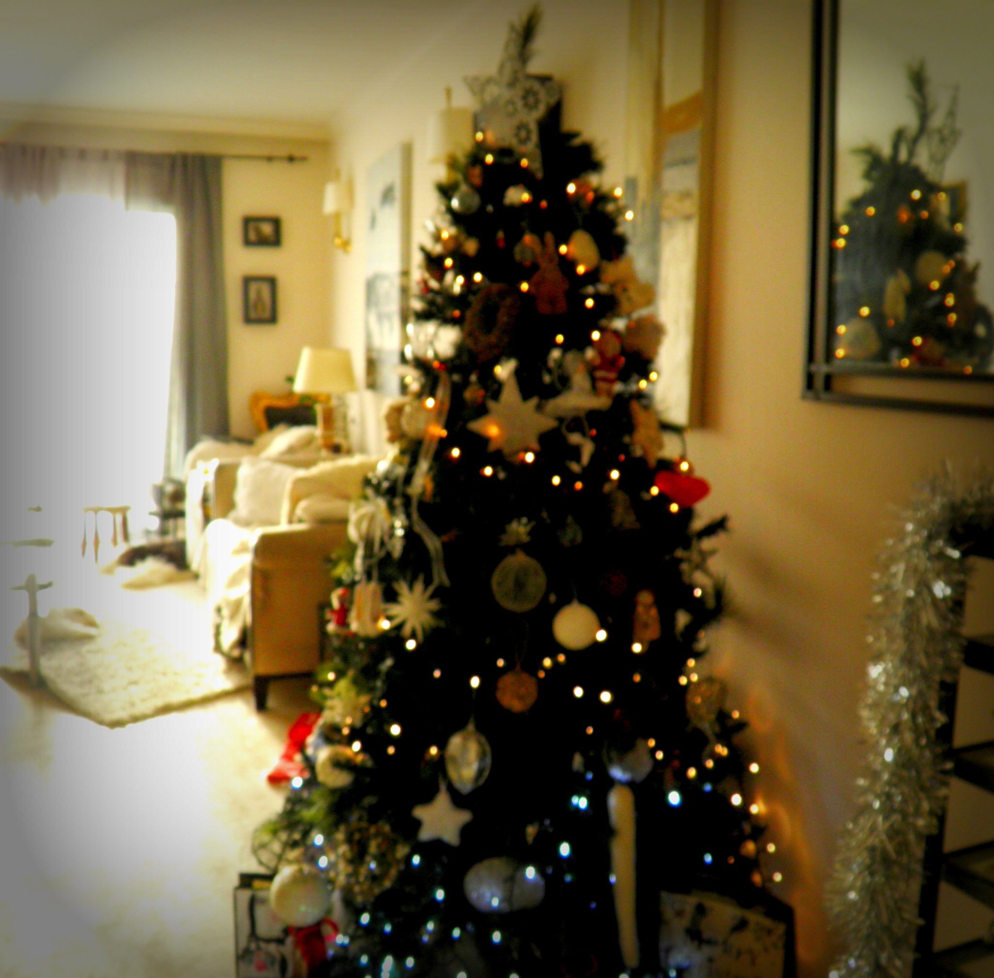 The Christmas tree at home with Frankie and Fudge in the background xxx by karenanne.borsani