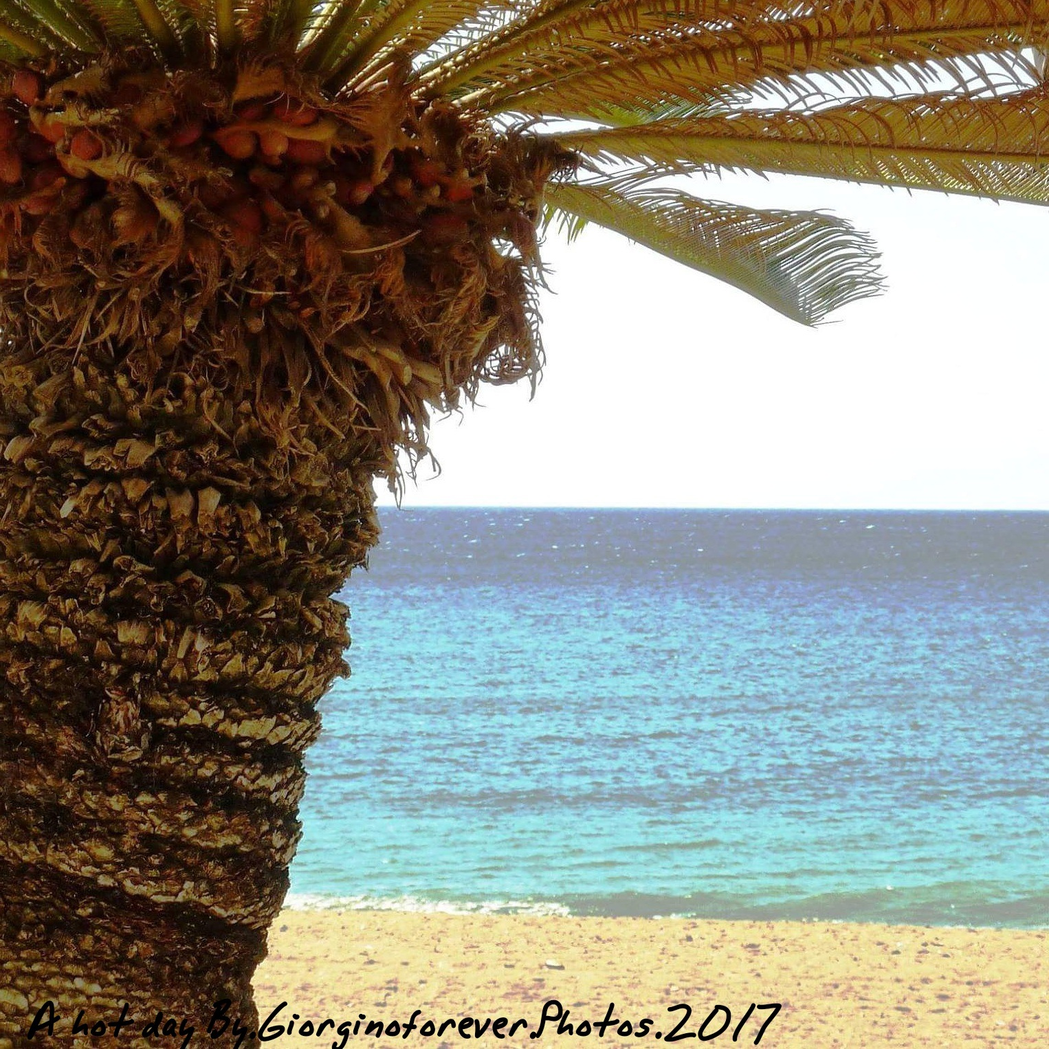 Marbella hot !!! by karenanne.borsani