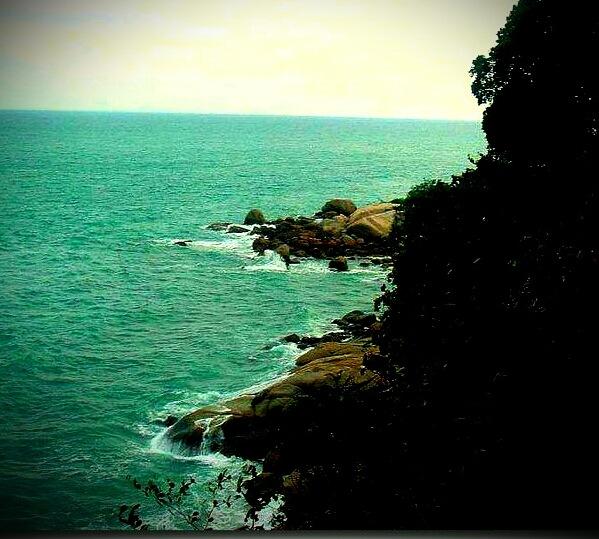 Beauty of nature... by karenanne.borsani