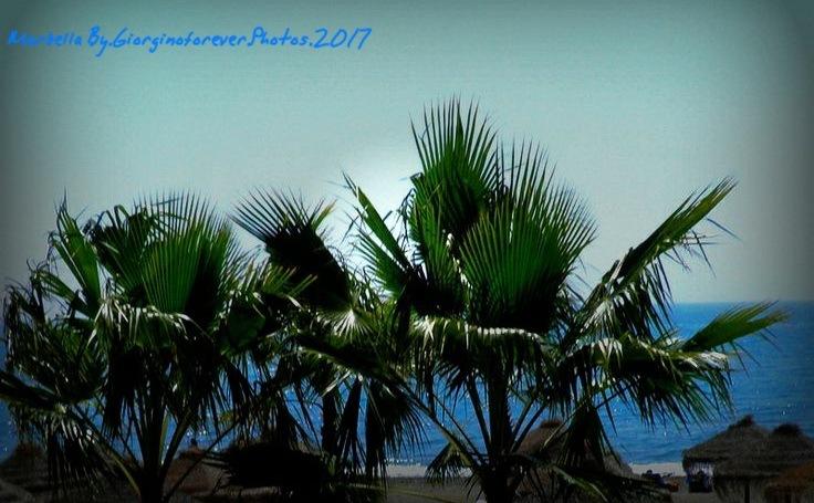 Marbella today xxx by karenanne.borsani